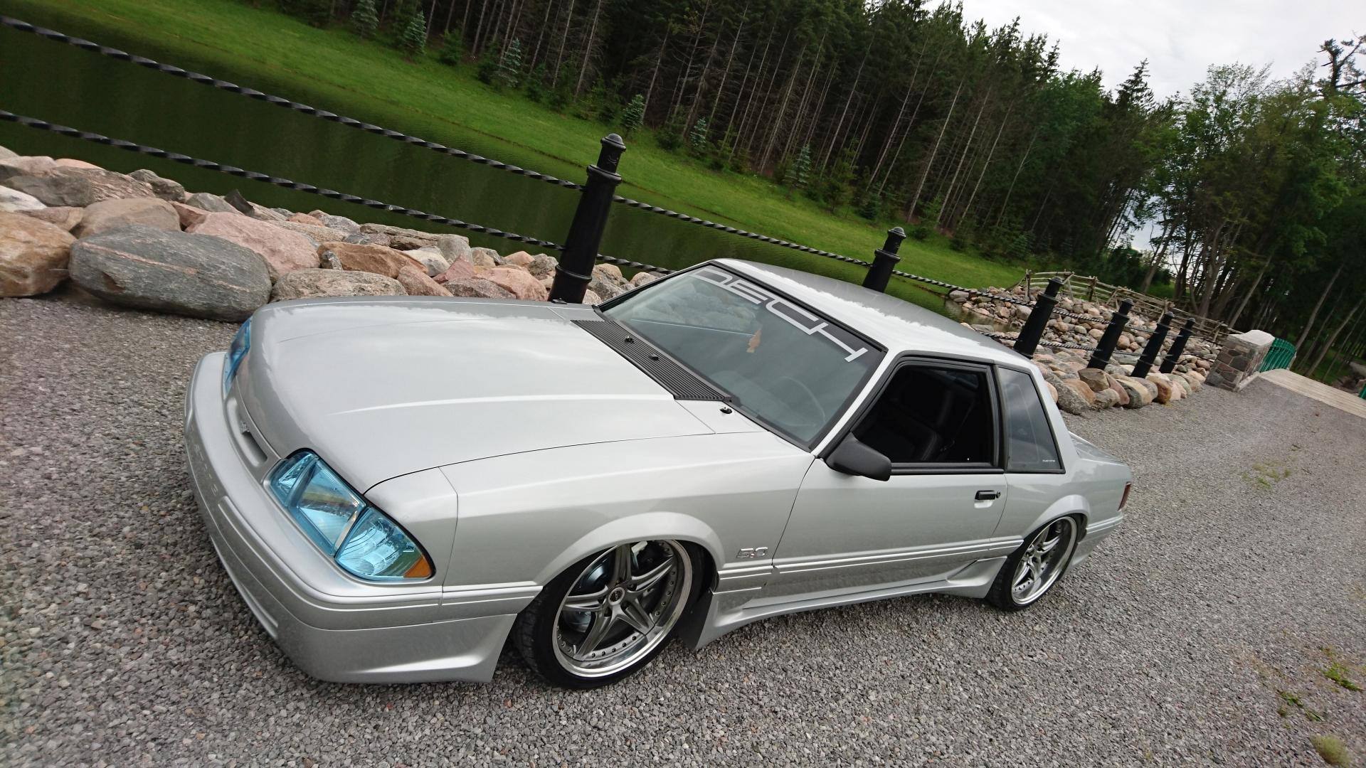 Dech.Mustang.23.jpg