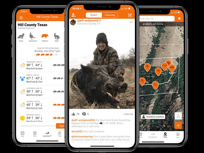 Wild Hog — Times To Hunt