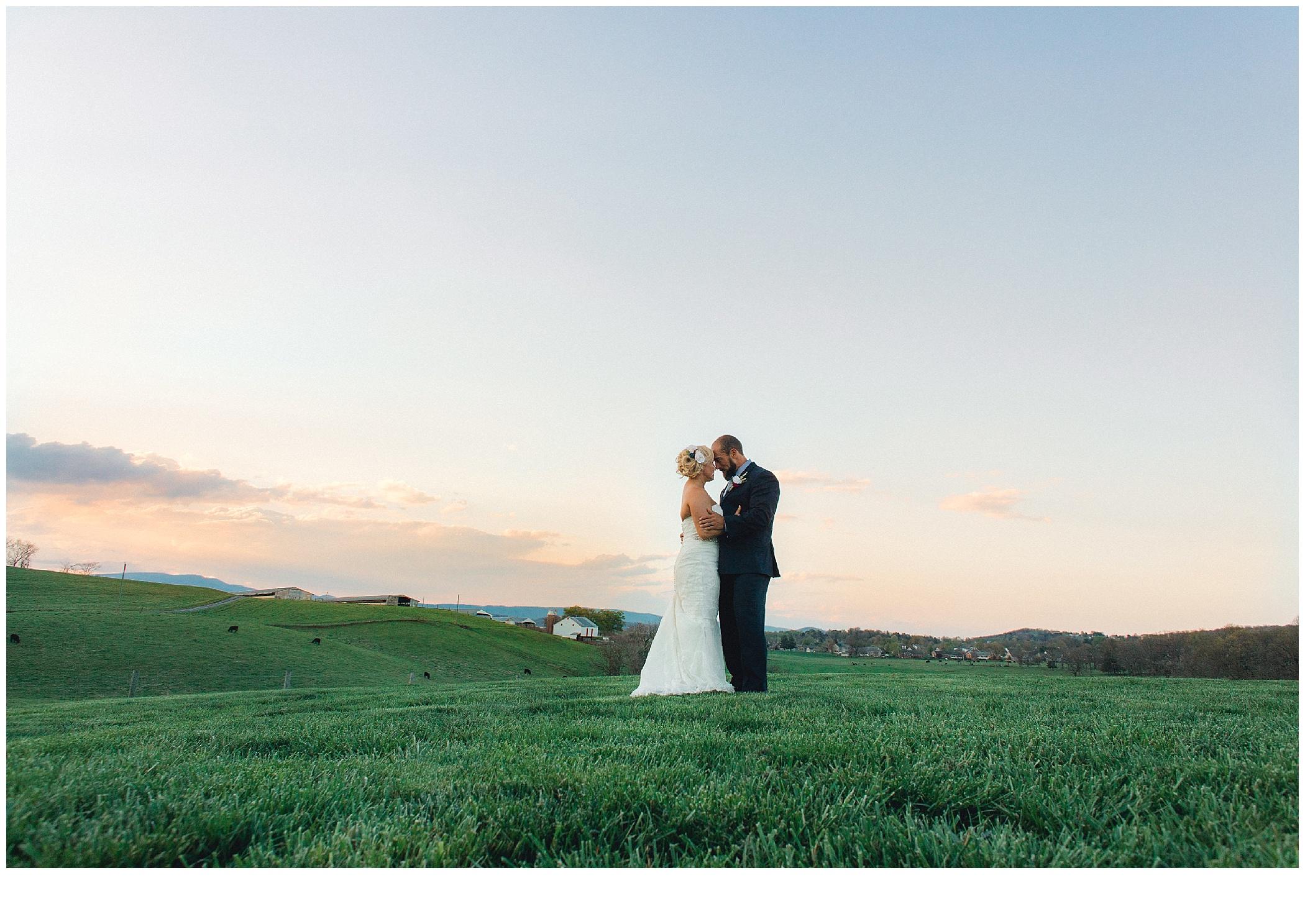 Virginia Wedding Photographer_2057.jpg