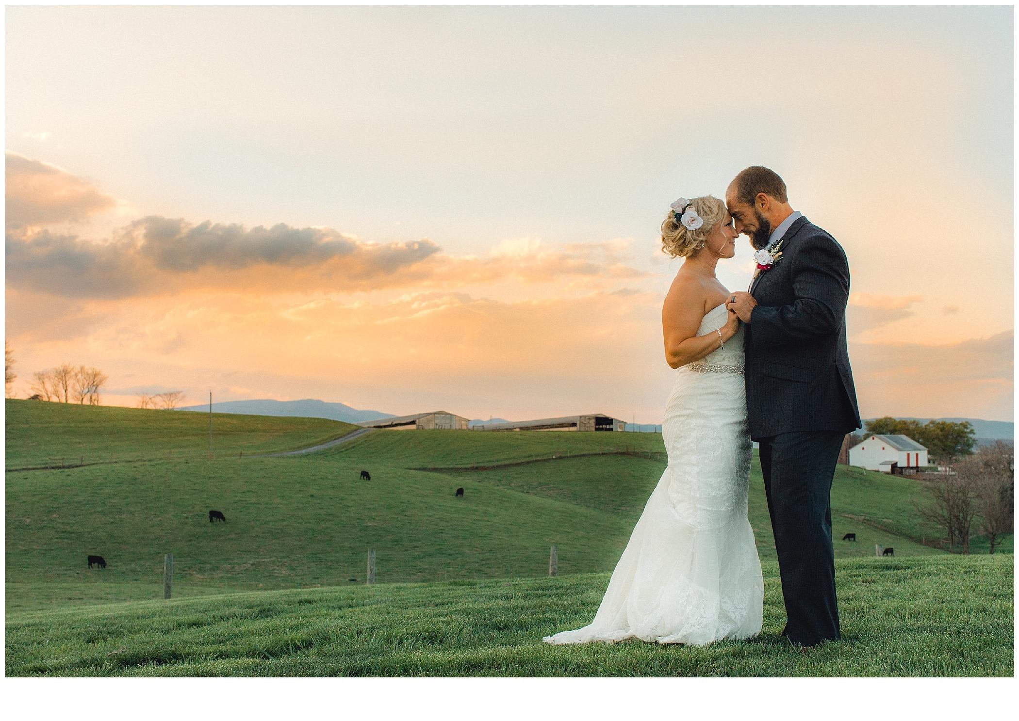 Virginia Wedding Photographer_2058.jpg