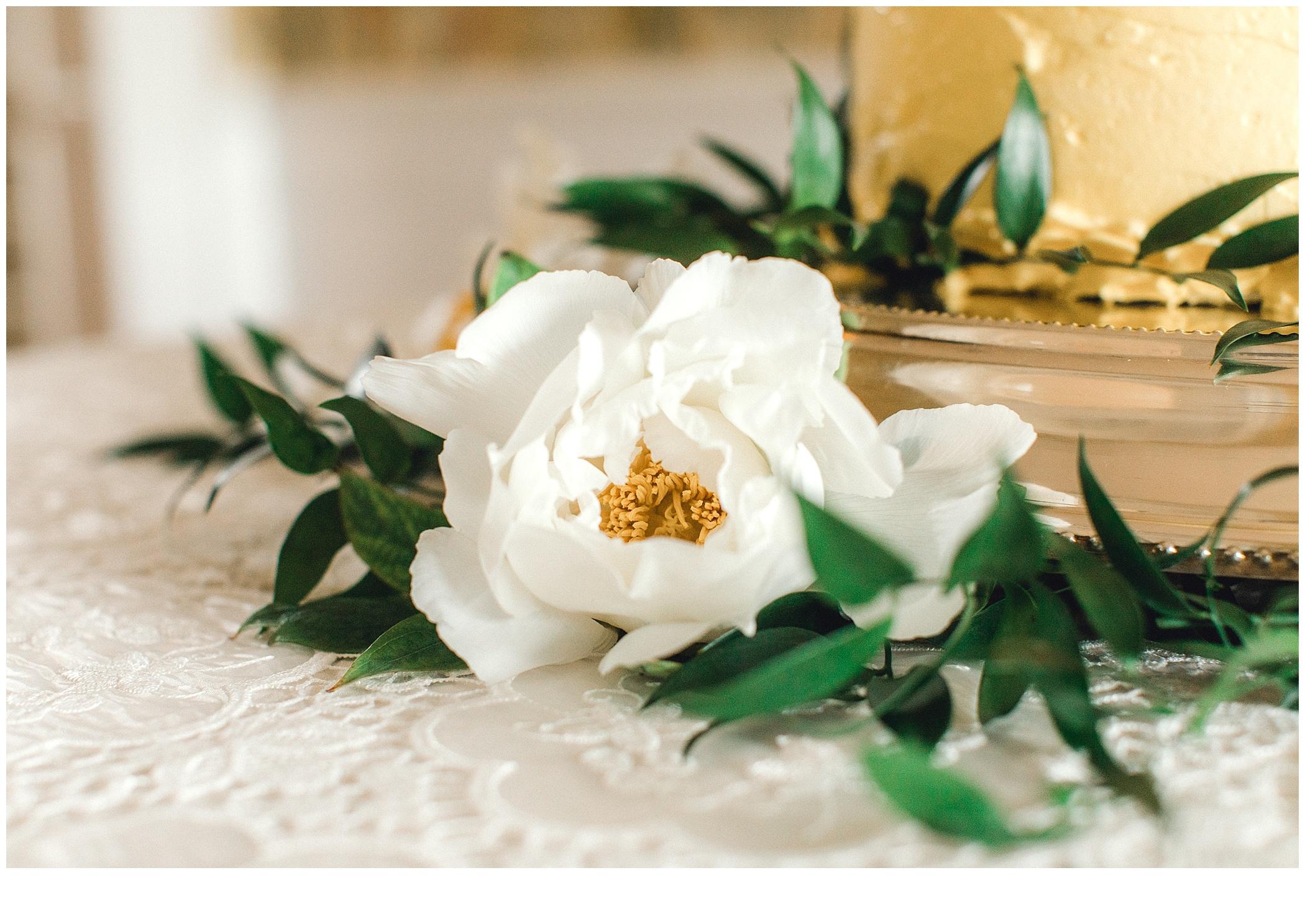 Virginia Wedding Photographer_2126.jpg