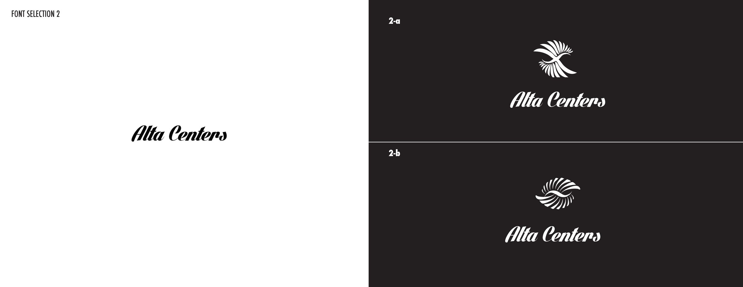 AltaFont-Logo OptionsV4_Page_03.jpg