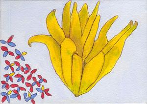 Buddha Hand Citrus
