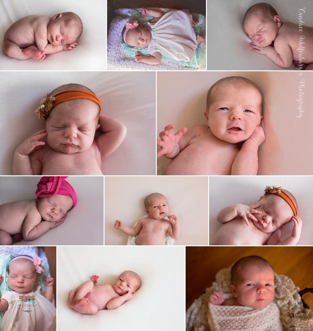Best newborn photographer in Sanford NC photographs baby girl for family.