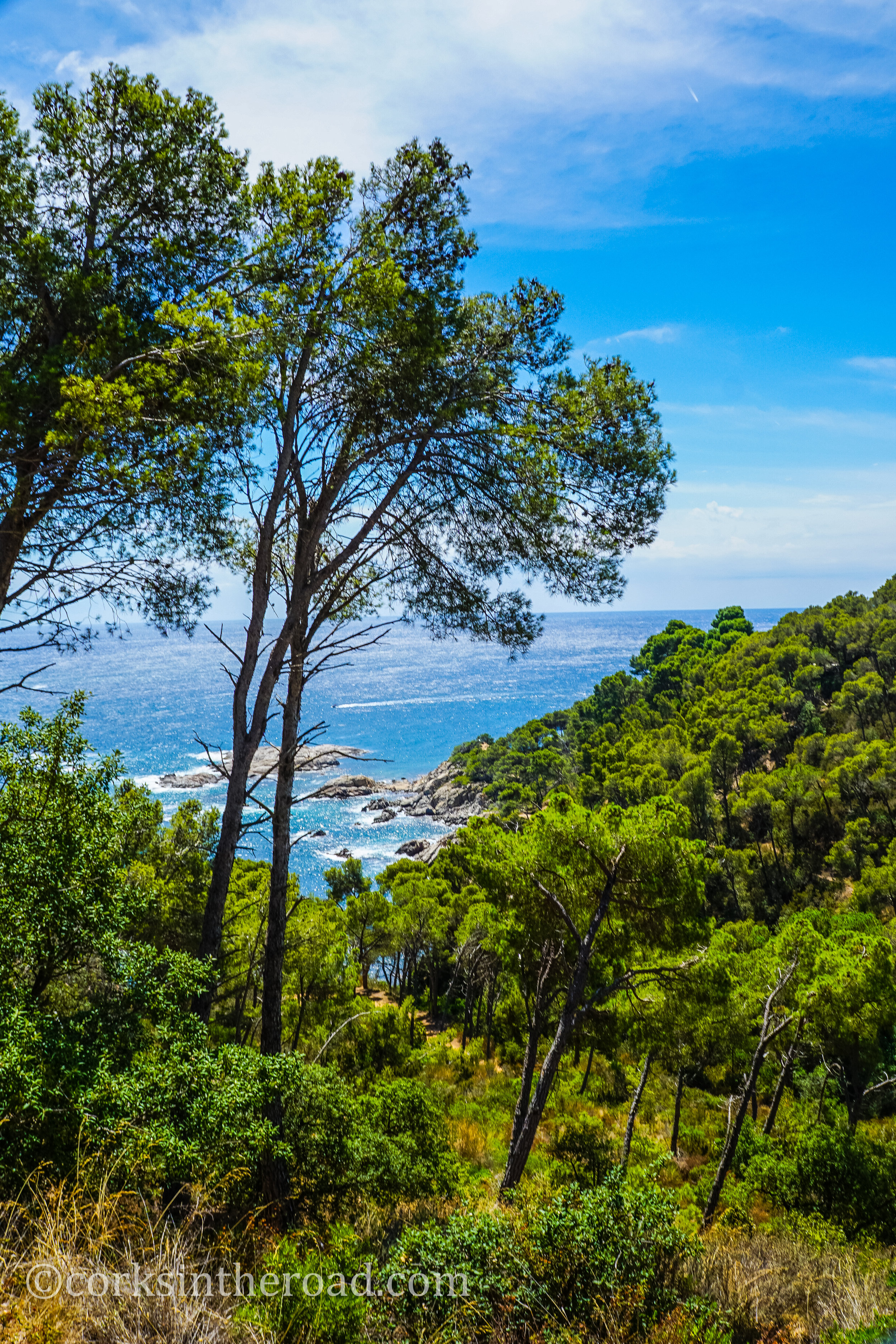 20160810Barcelona, Corksintheroad, Costa Brava, Costa Brava Landscape-28.jpg