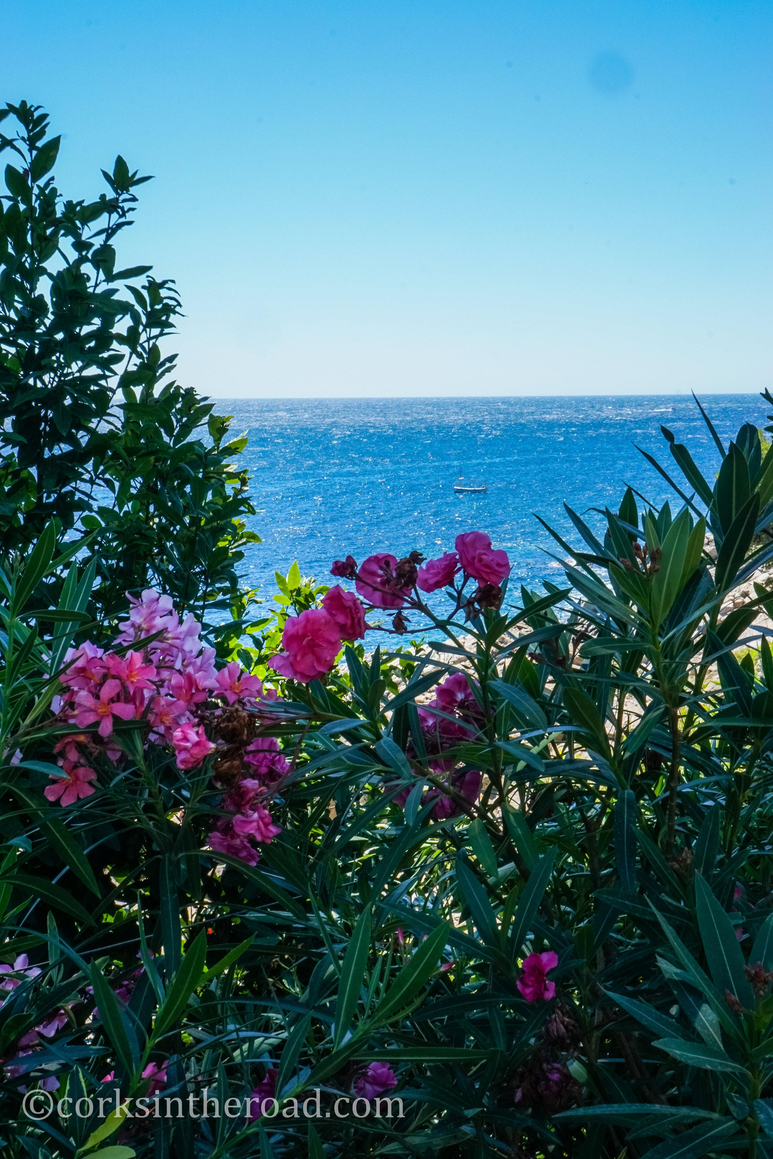 20160807Barcelona, Corksintheroad, Costa Brava, Costa Brava Landscape-11.jpg