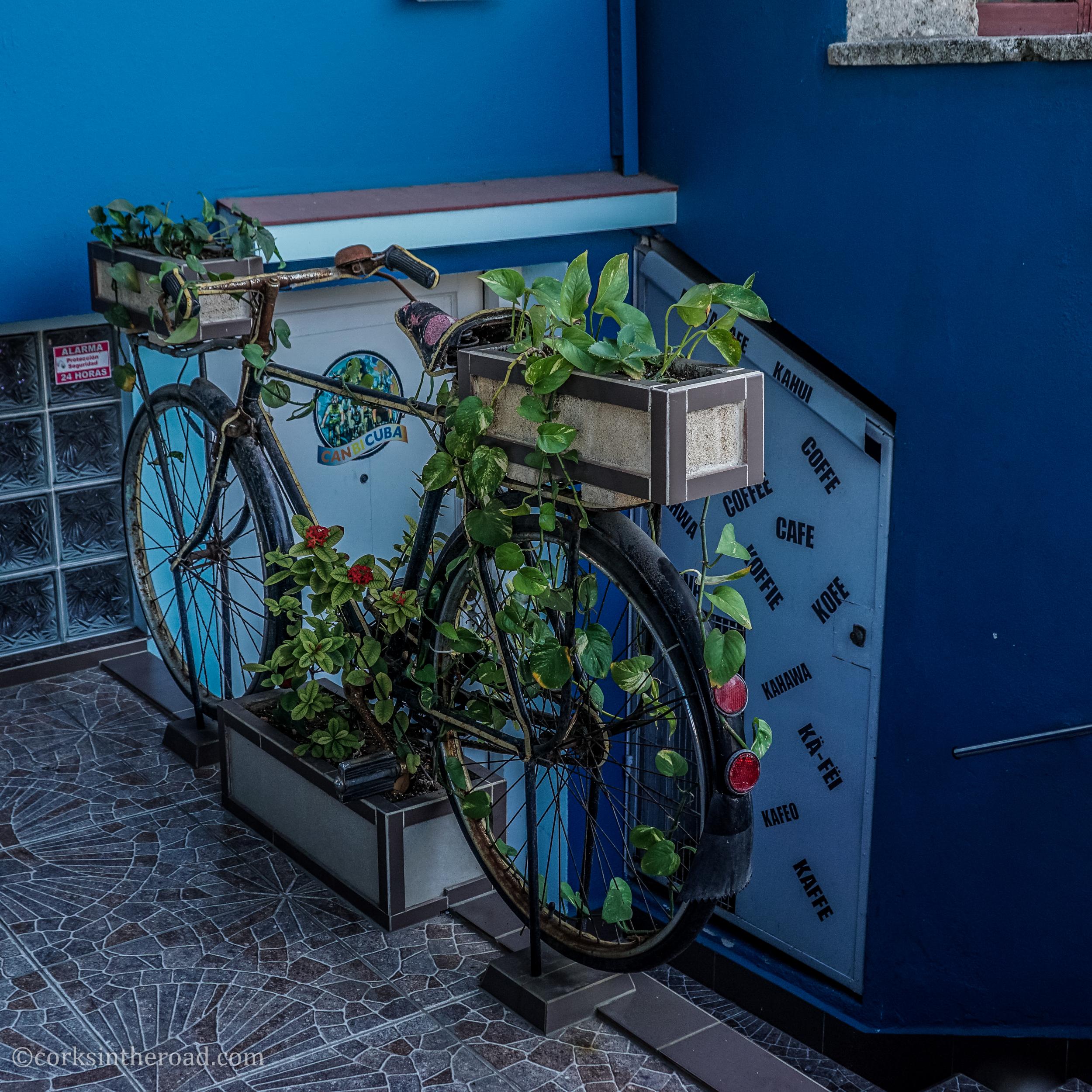 Corksintheroad, Cuba, Havana-3.jpg