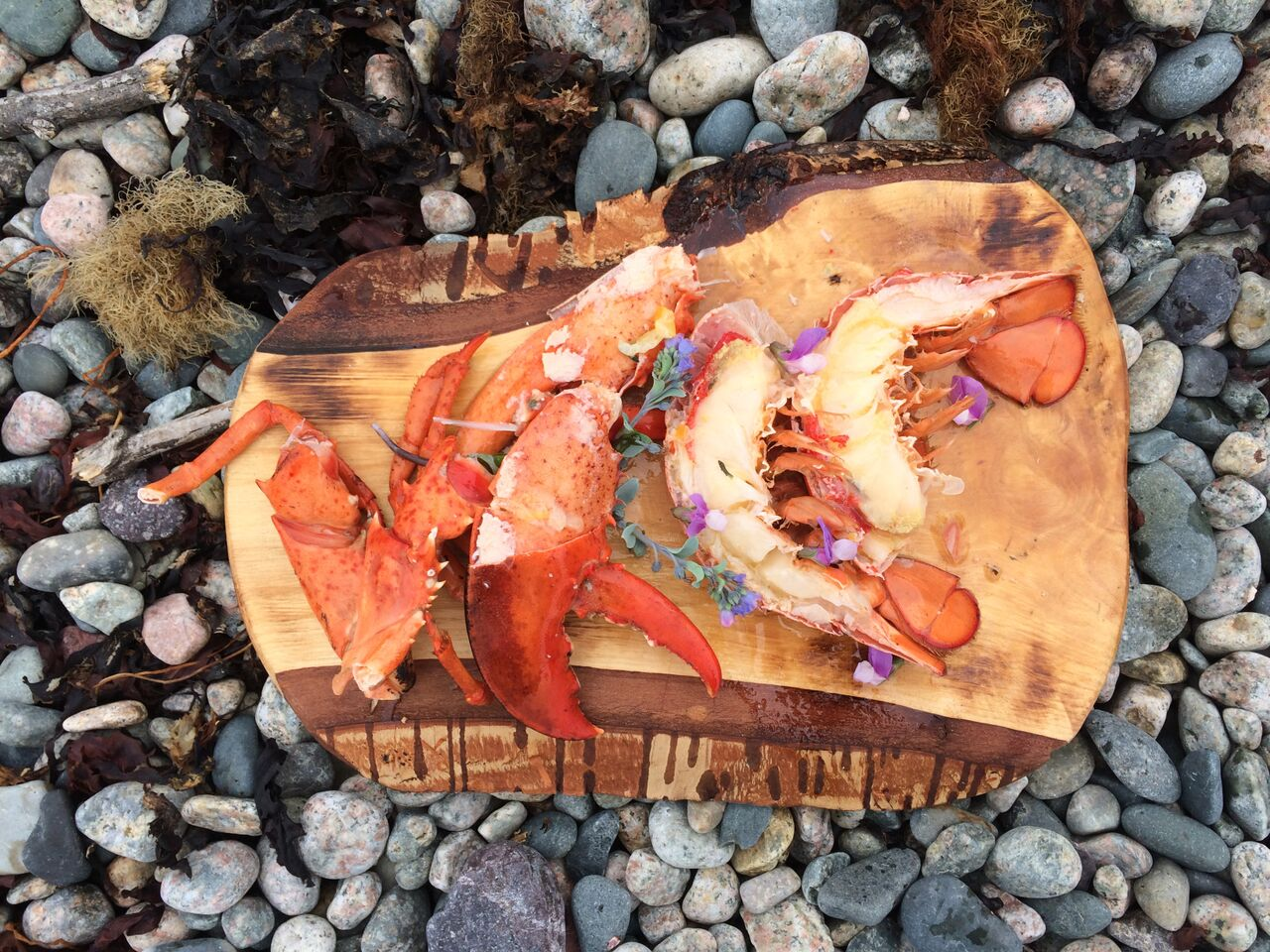 Lobster & Lovage - Lobster season here is something we look forward to every Spring and with such a very short window to taste our own Newfoundland Lobster, don't miss out! Join us on the beach for a workshop during one of the most exciting seasons of the year!We'll start our day with a foraging walk across the beach to gather some beautiful spring edibles to add to our Lobster. Once we've enjoyed our beach walk along the seashore we'll head back to the Cod Sounds HQ to light the fire and gather round for some tips on cooking these crustaceans.You'll learn about the many preparations of our heritage foods here at the camp and even make some treats to take home with you.From the beginning to the end of our meal everyone will be involved in making it all go round :) Preparing a lobster for your plate is messy business so be prepared to roll up your sleeves and learn how to coax out of the shell, some of the most beautiful seafood from the sea.