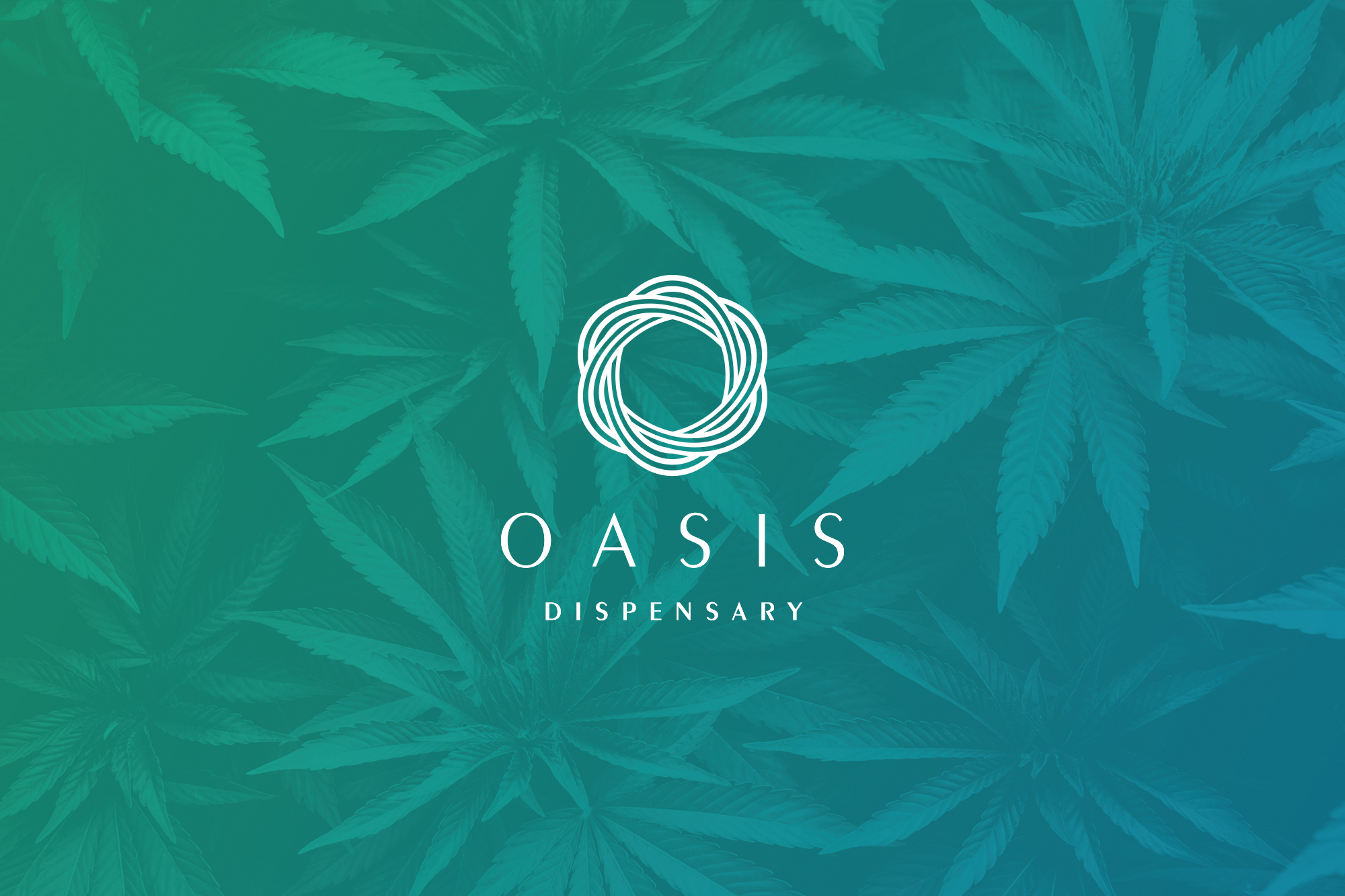 Oasis Dispensary - Strategy & Branding  View Project