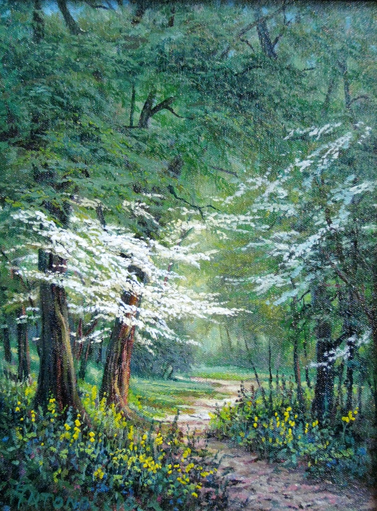First Dogwoods •