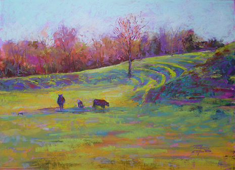 Spring Cows *
