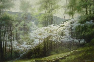 Mountain Dogwood *