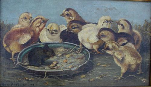 Chick's Feeding