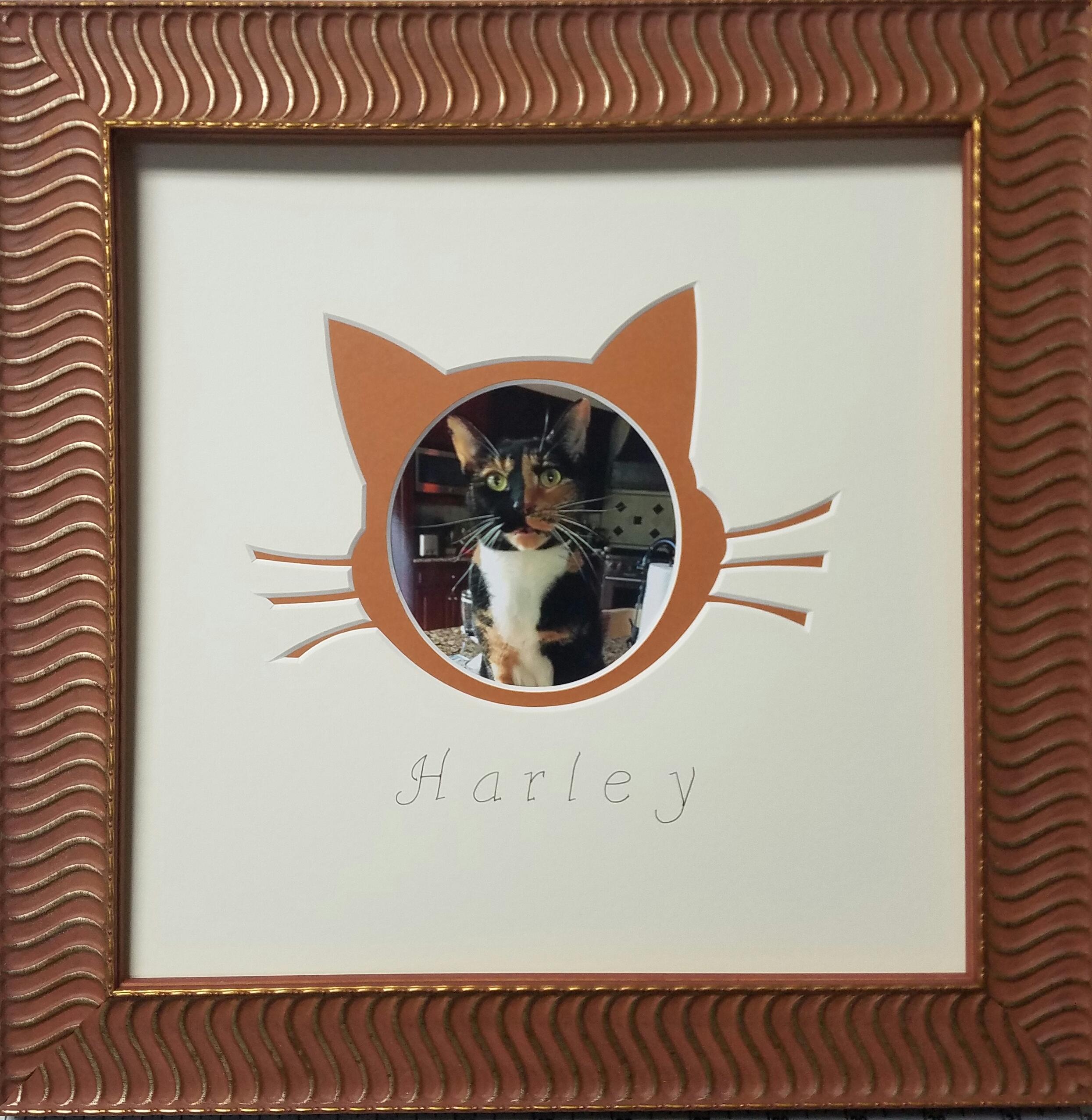 We also provide custom mat cut art.