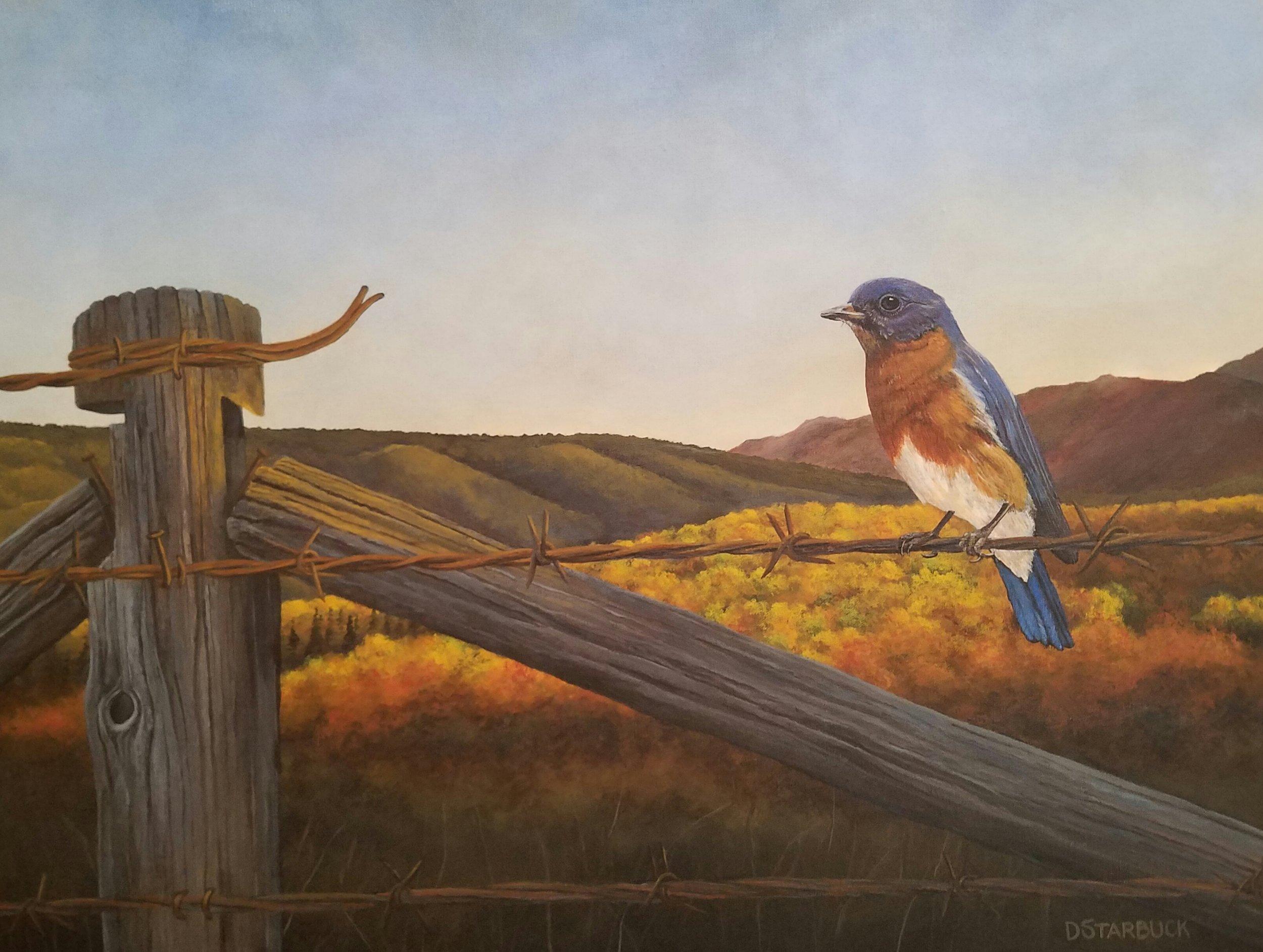 """Blue Ridge Empty Nester"" by David Starbuck"