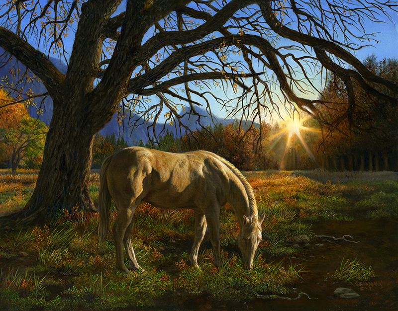 Sunrise Meadows *