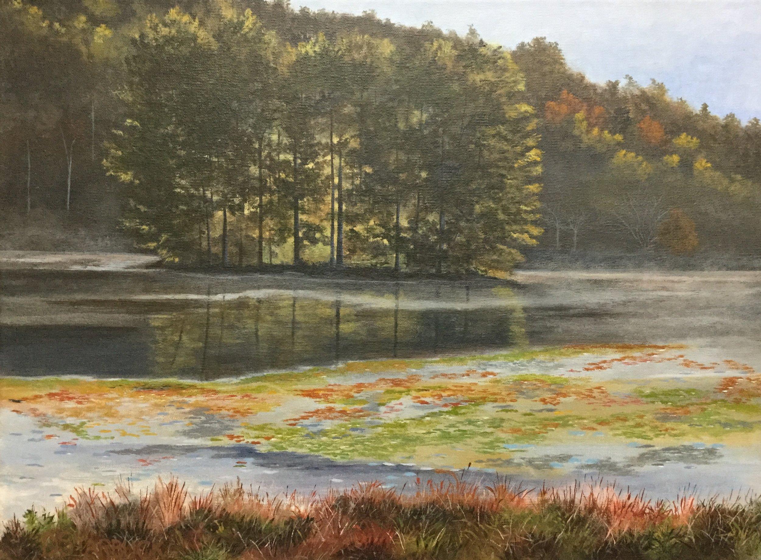Quiet Isolation, Bass Lake