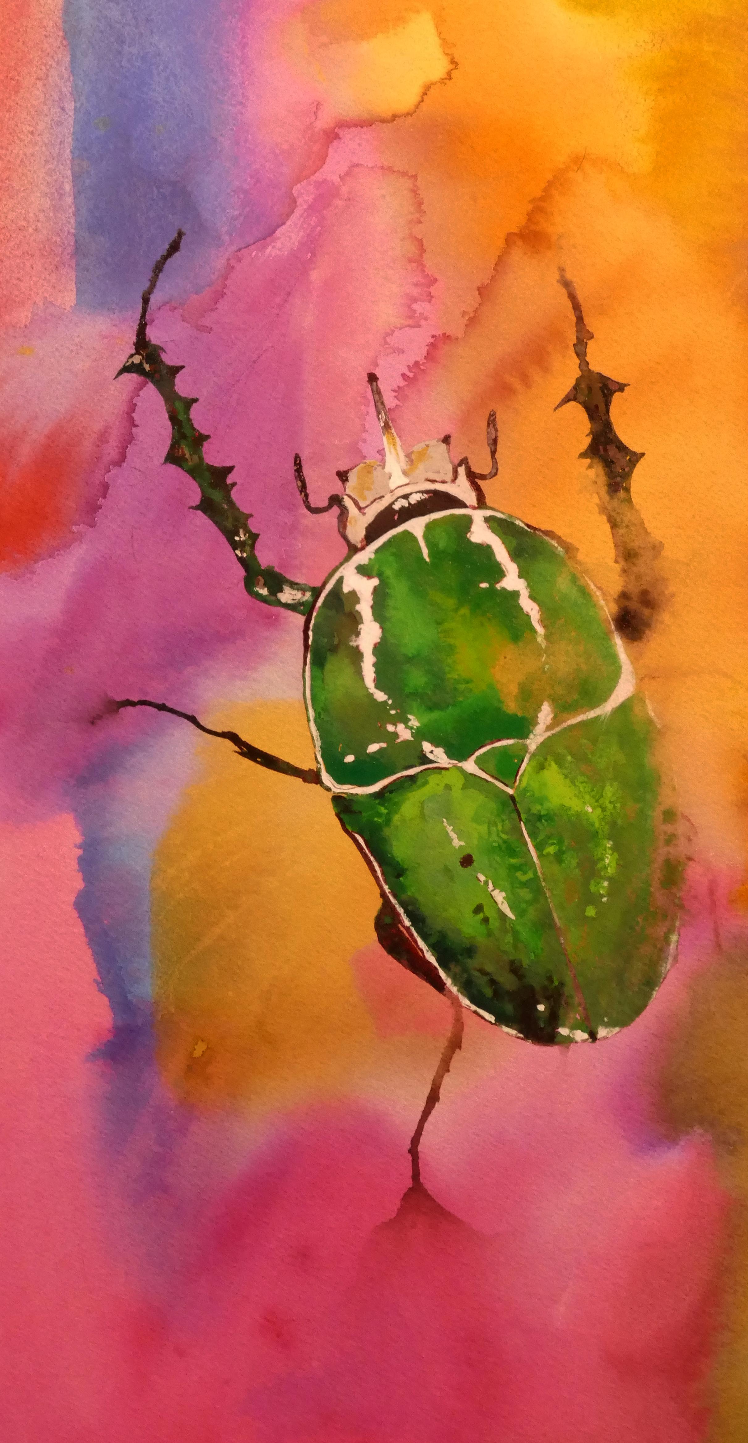 Giant Flower Beetle