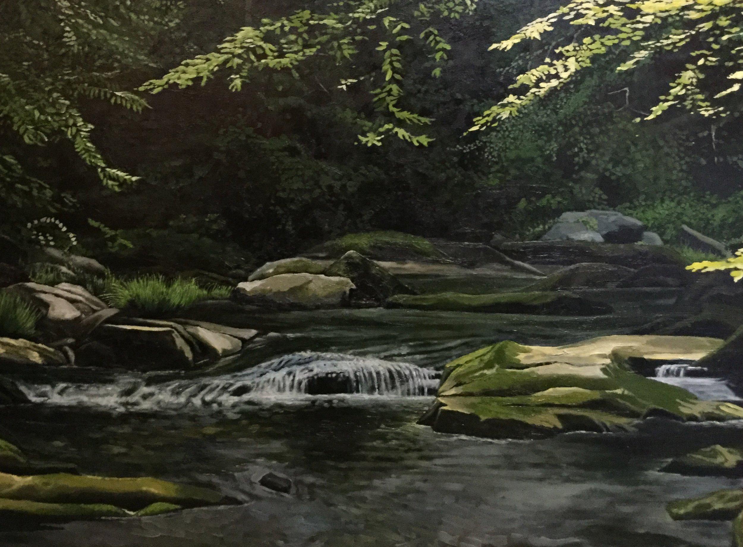Elk River, Early Summer