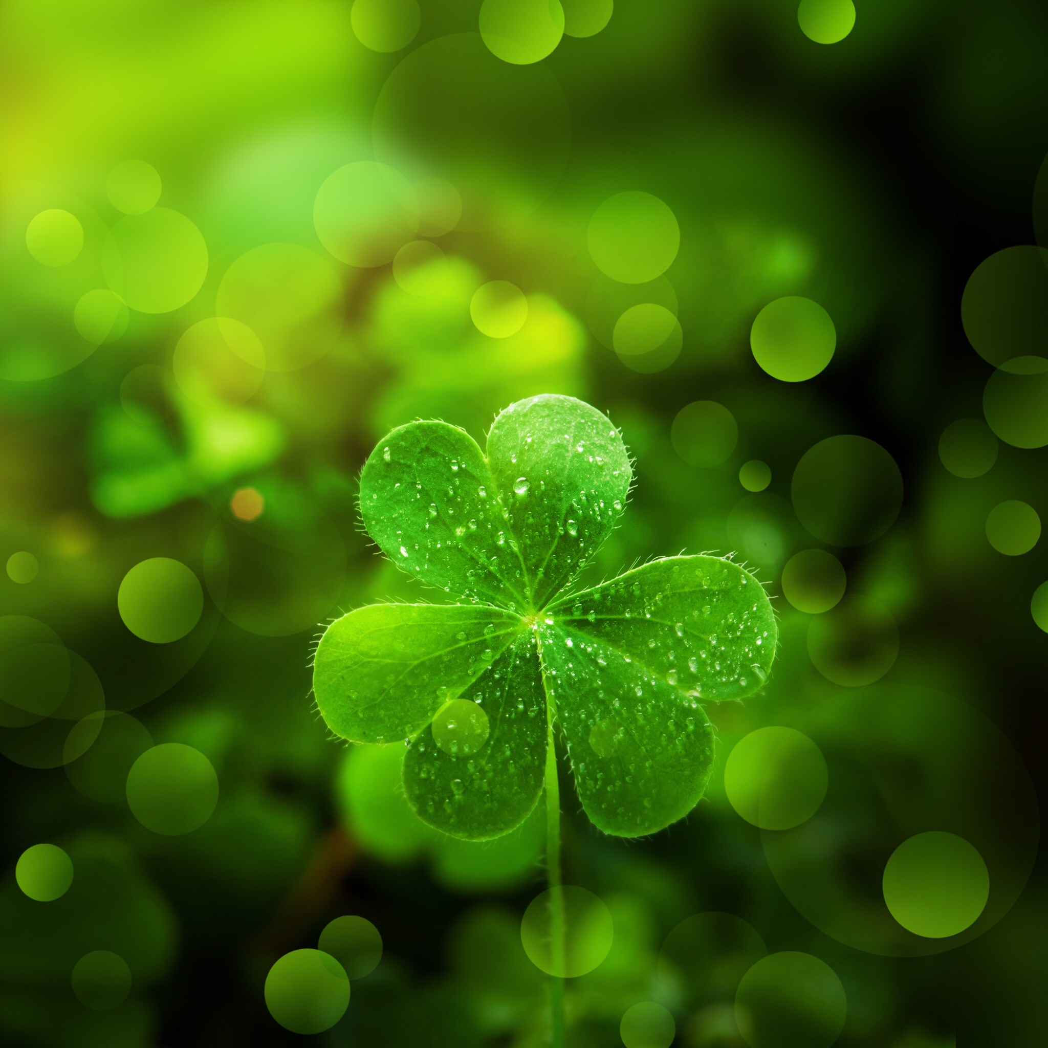 What defines luck?