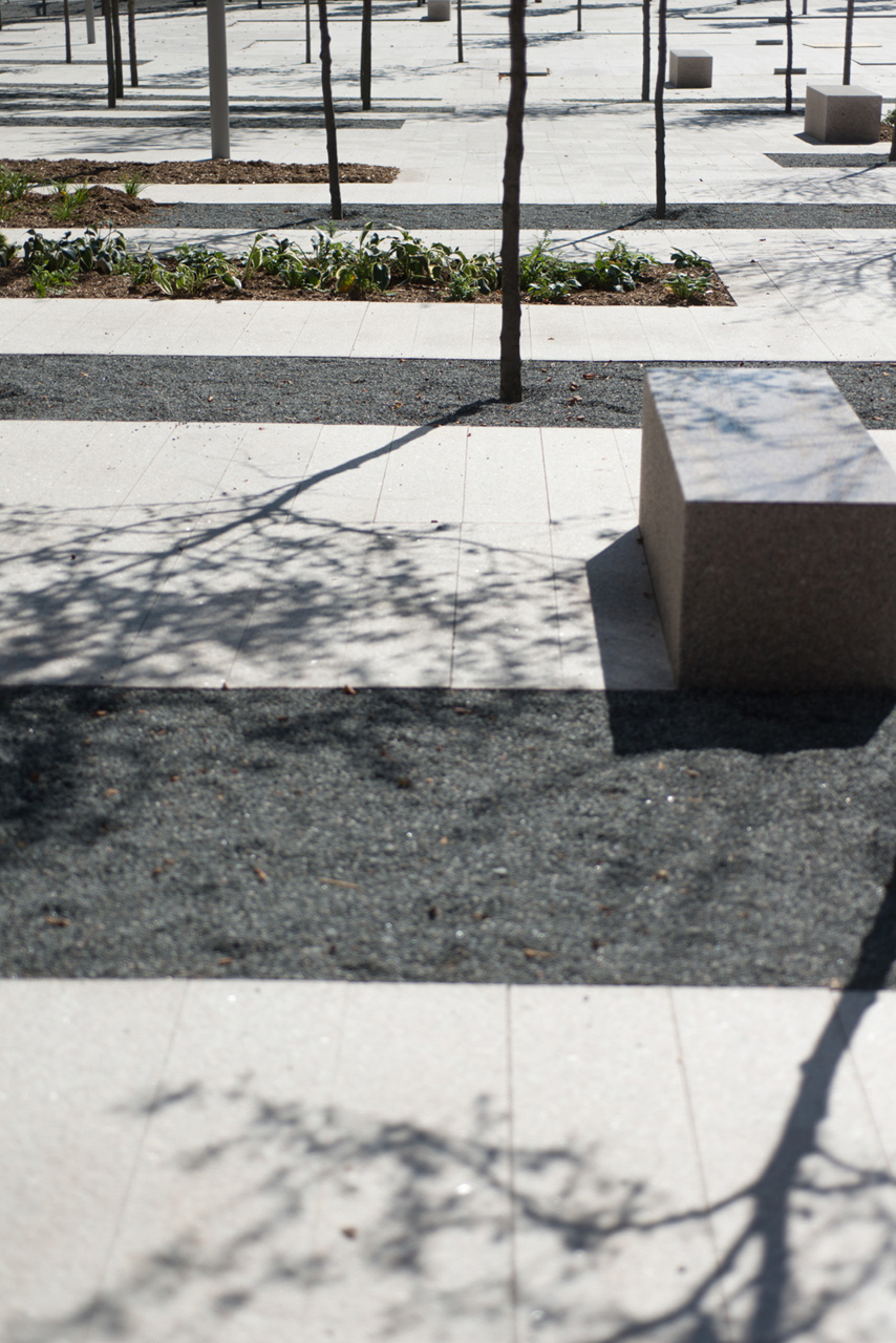 Copy of Copy of June Callwood Park - Granite Bench Tree in Mulch