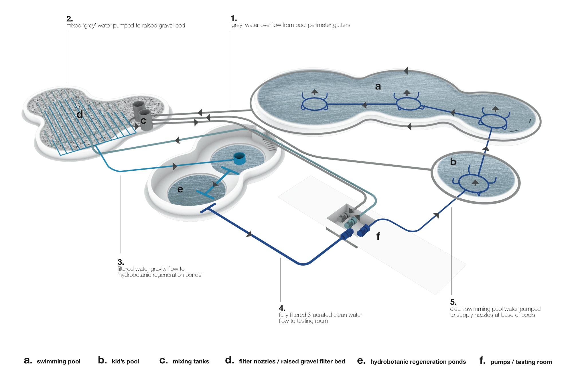Natural Swim Experience - Pool Diagram