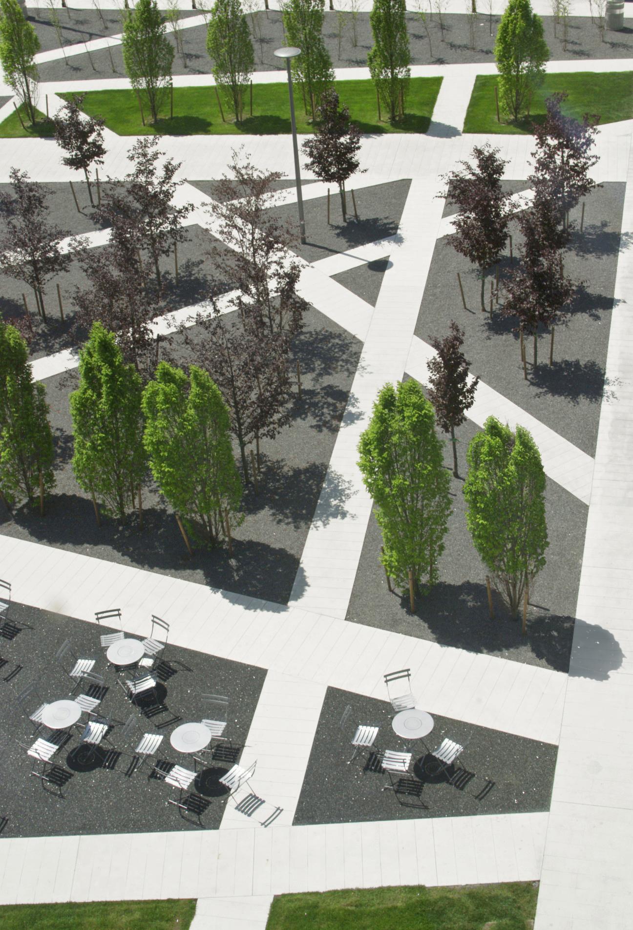 Scholars Green - Pathways Trees Dining Tables Lighting