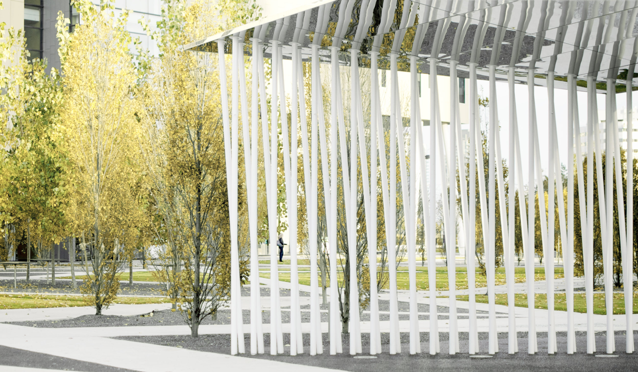 Scholars Green - pavilion trees
