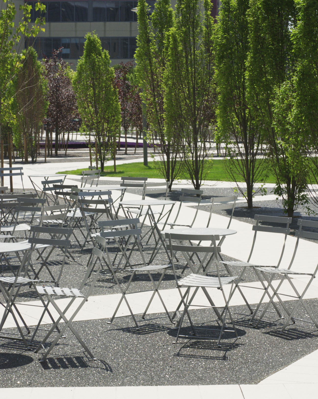 Scholars Green - Trees Dining Tables Chairs