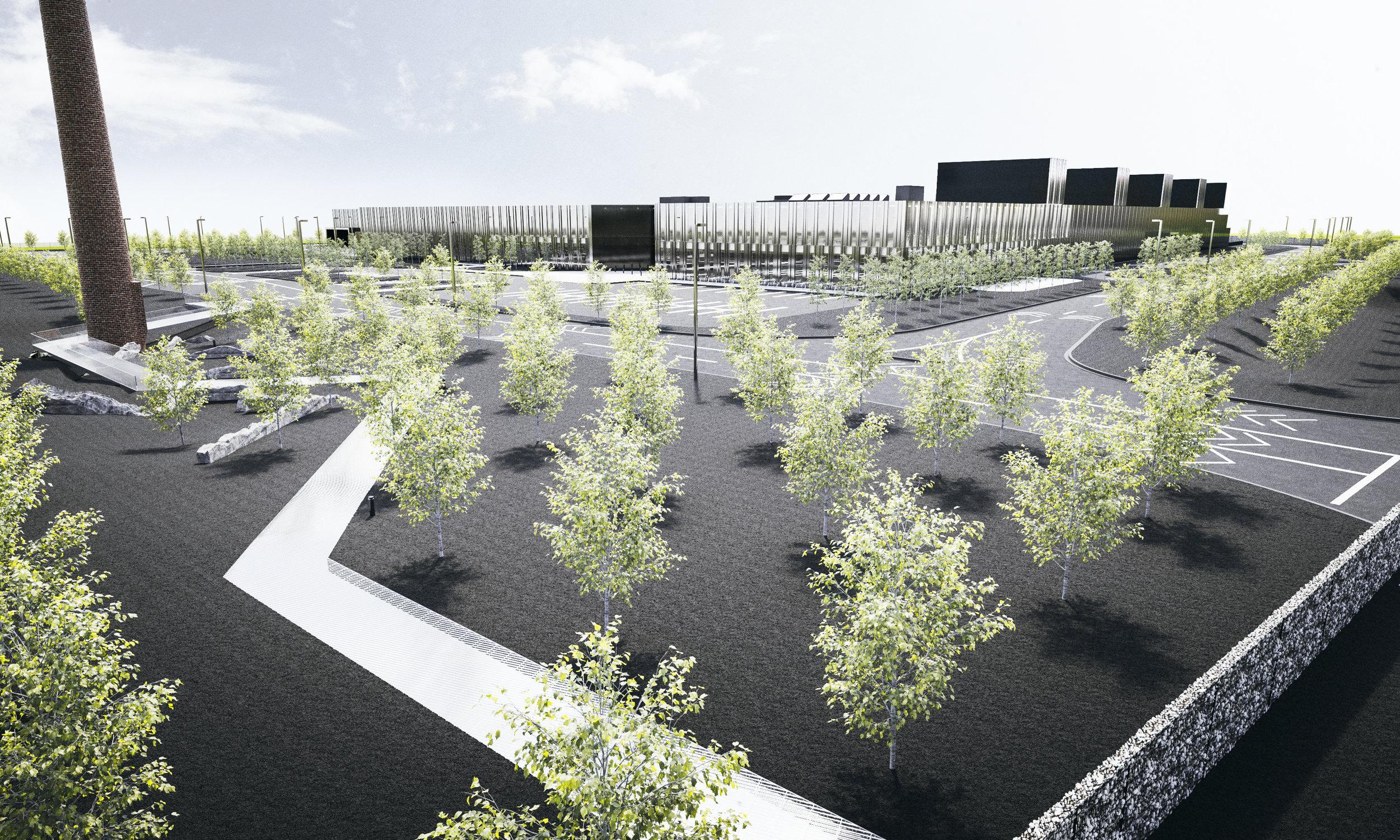 NETG - Aerial of Trees in Black Mulch Landscape