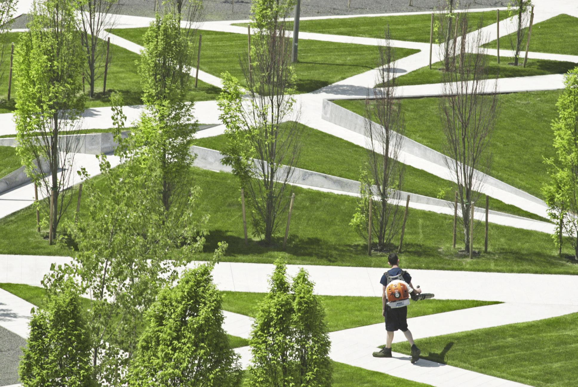 Scholars Green - grass pathway trees