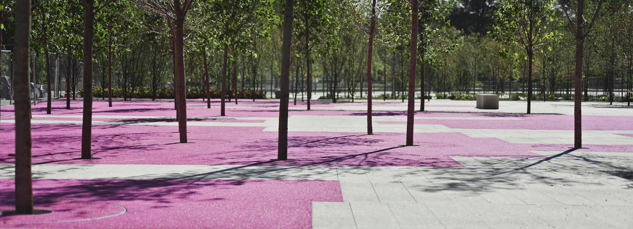 June Callwood Park - Granite and Trees in Pink rubber paving