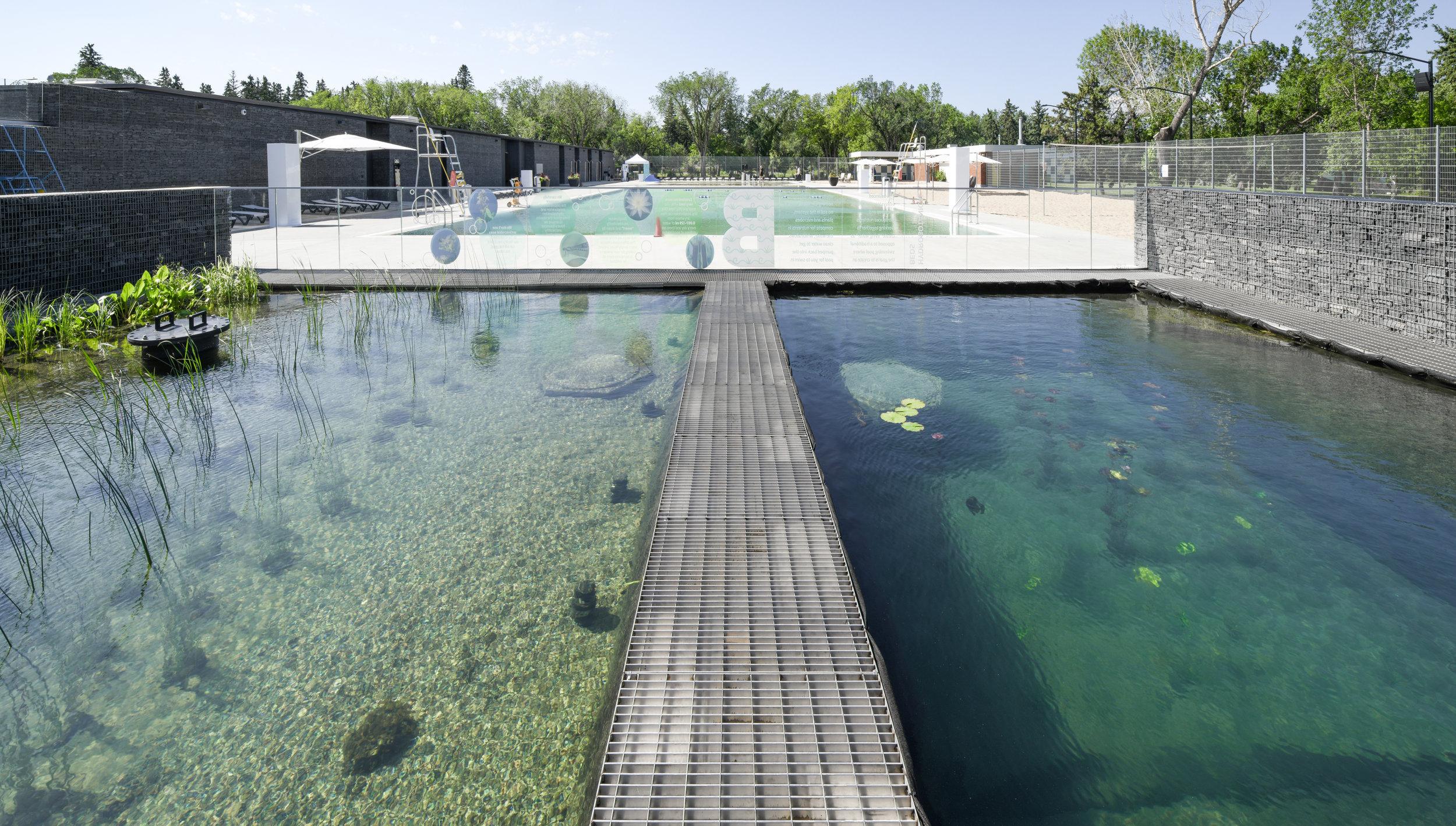 gh3 - Borden Park Natural Swimming Pool - Hydrobotanic Pond Pano