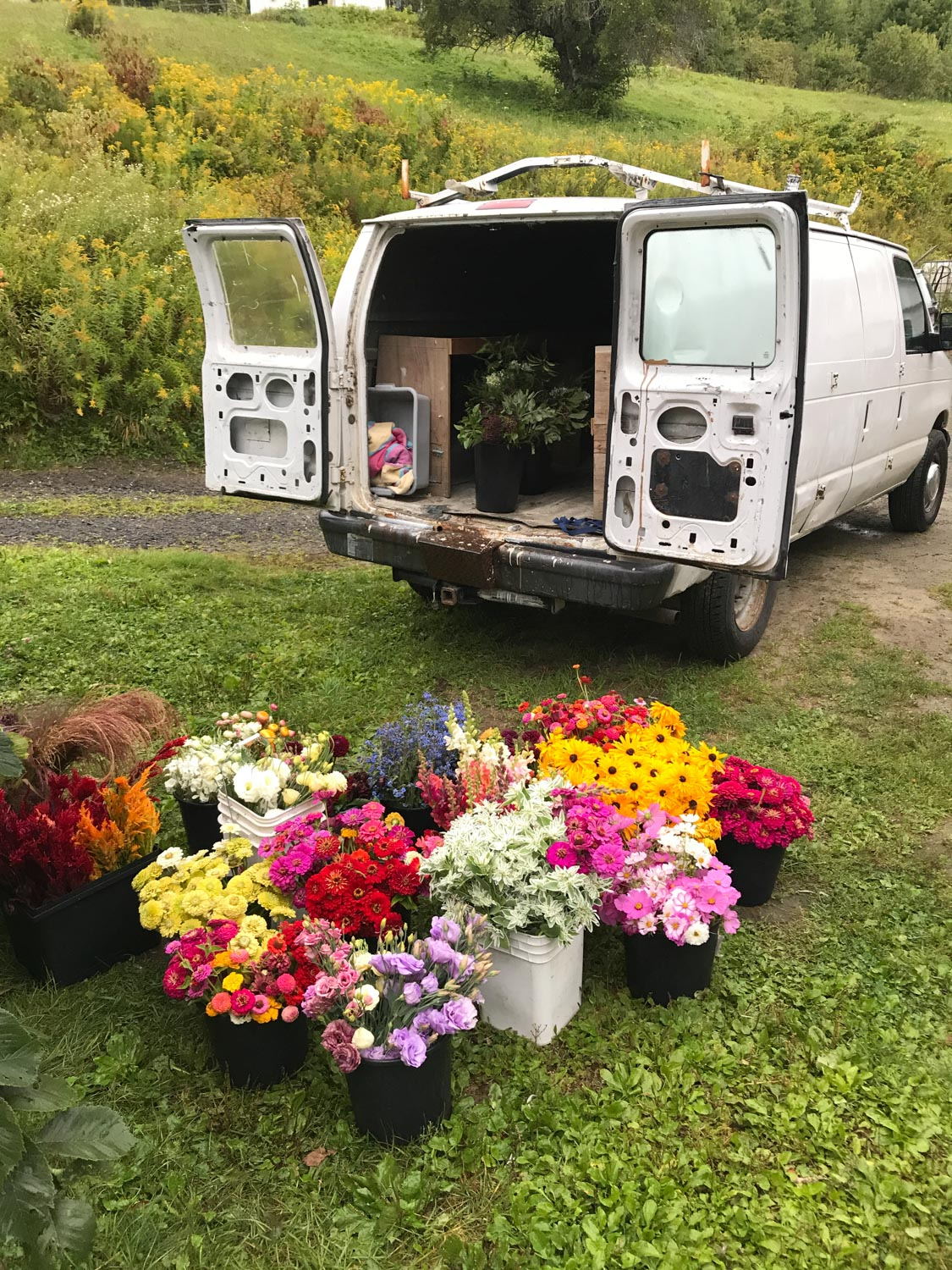 - We love working with florists and designers to provide Vermont grown, sustainable, chemical free blooms as an alternative to the largely toxic, conventionally grown foreign imports in the flower industry. We send out (mostly) weekly lists of flowers in bloom to local florists and can offer both pick up and delivery options depending on location and quantity. You can get on our weekly email list below or send us an email.