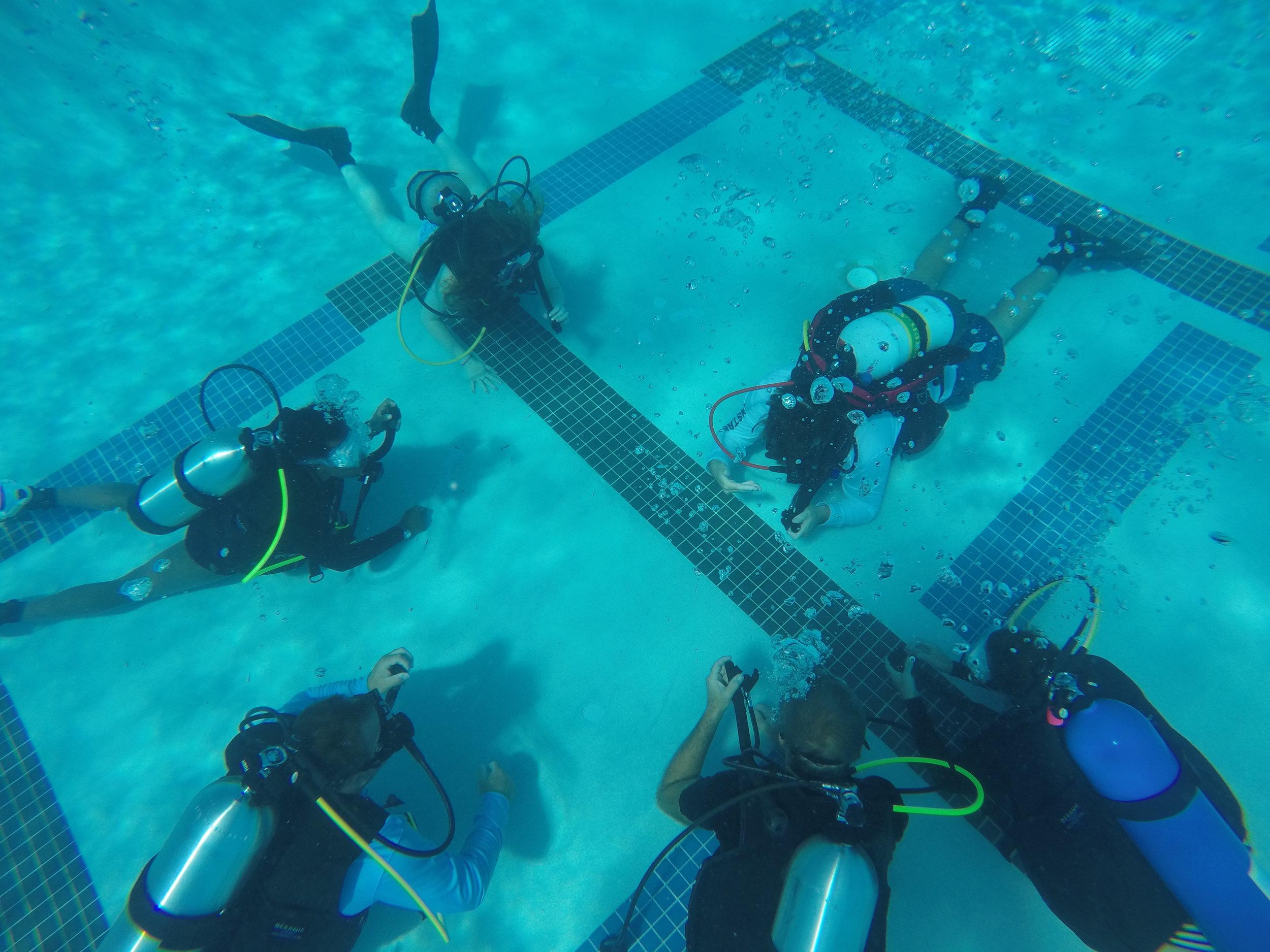 June 2017 Open Water Diver