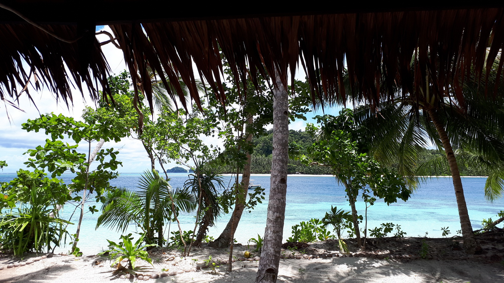 direct view from bungalow.jpg