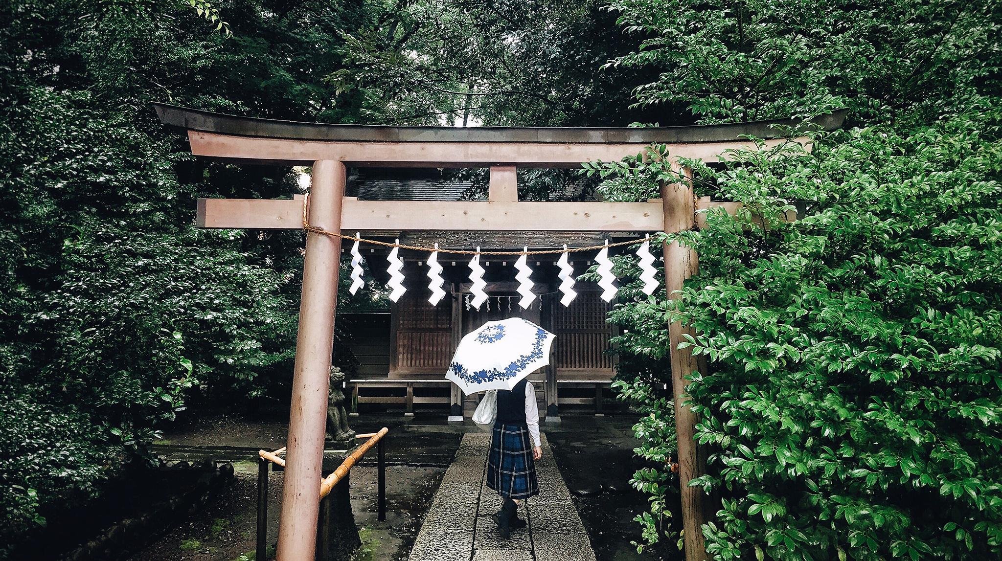 japon jardin.png