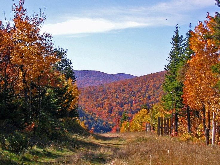 Annual Women's Weekend Retreat in the Catskills of upstate new york with Colleen -