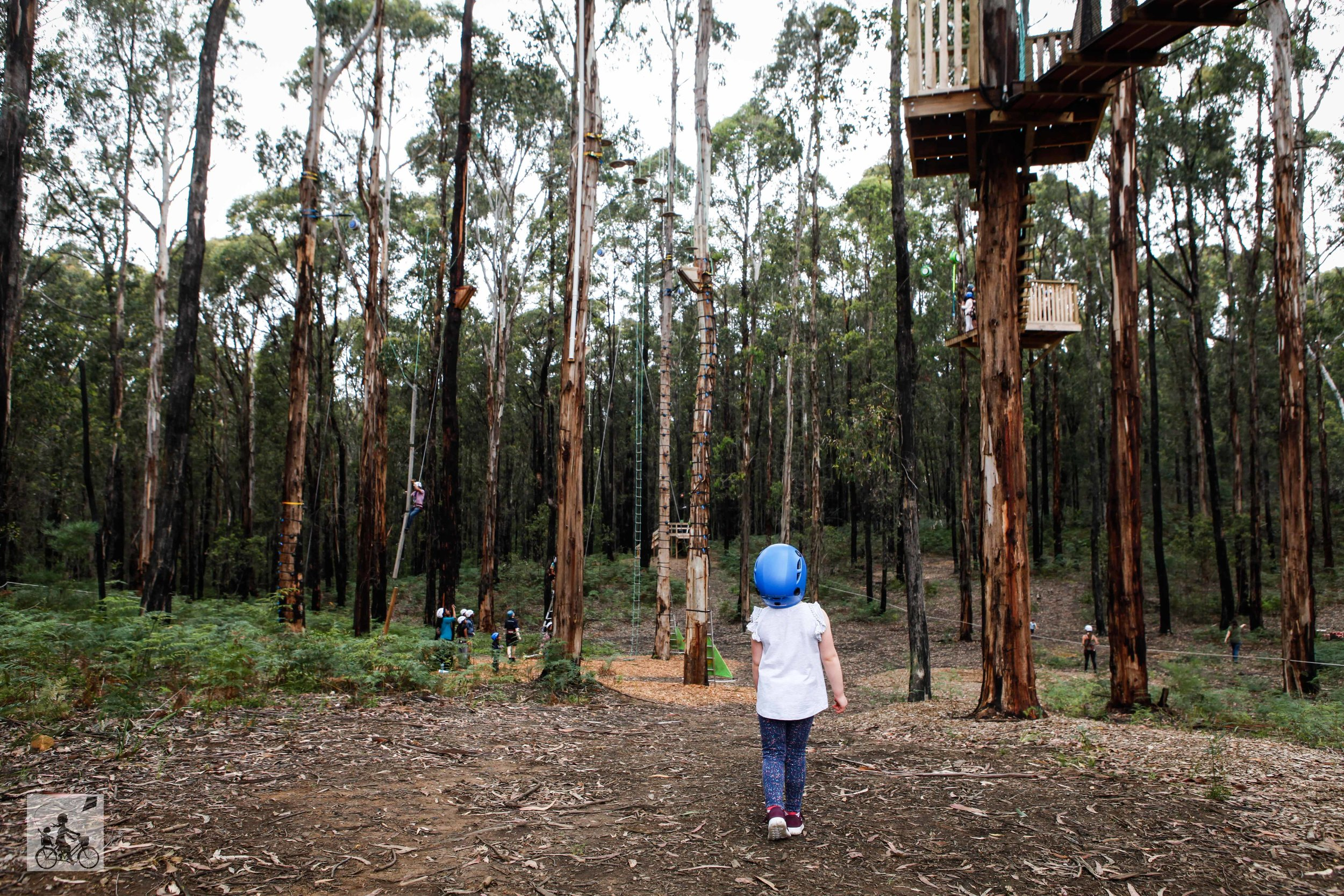 Mamma Knows East - Kinglake Forest Adventure (48 of 61).jpg