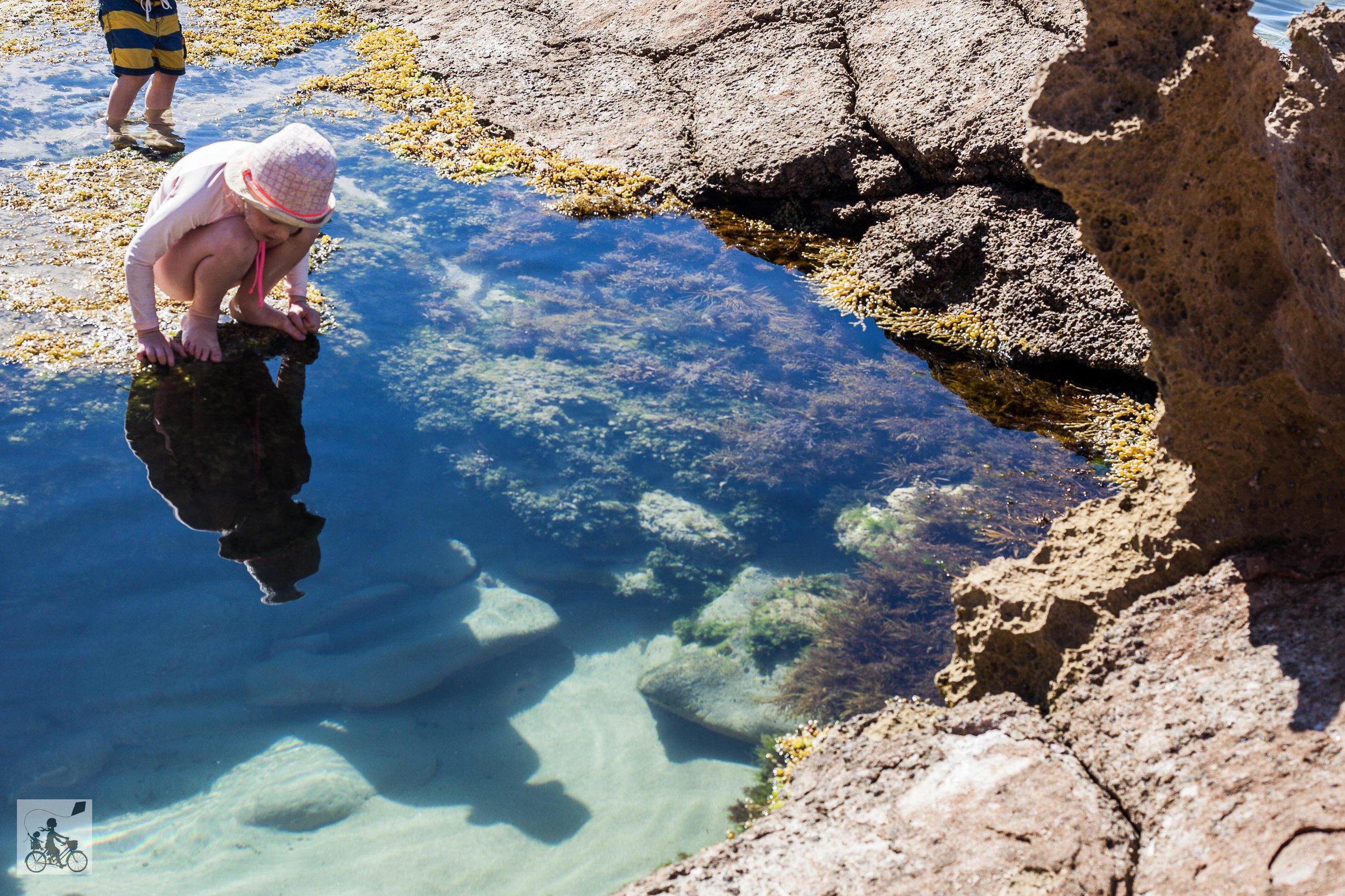 Sorrento Rock Pools-2.jpg