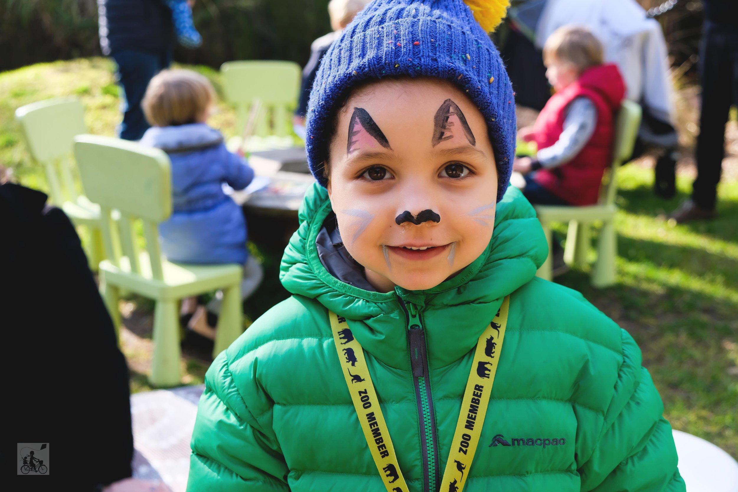 tasmanian devil tuesdays at melbourne zoo, parkville - mamma knows north