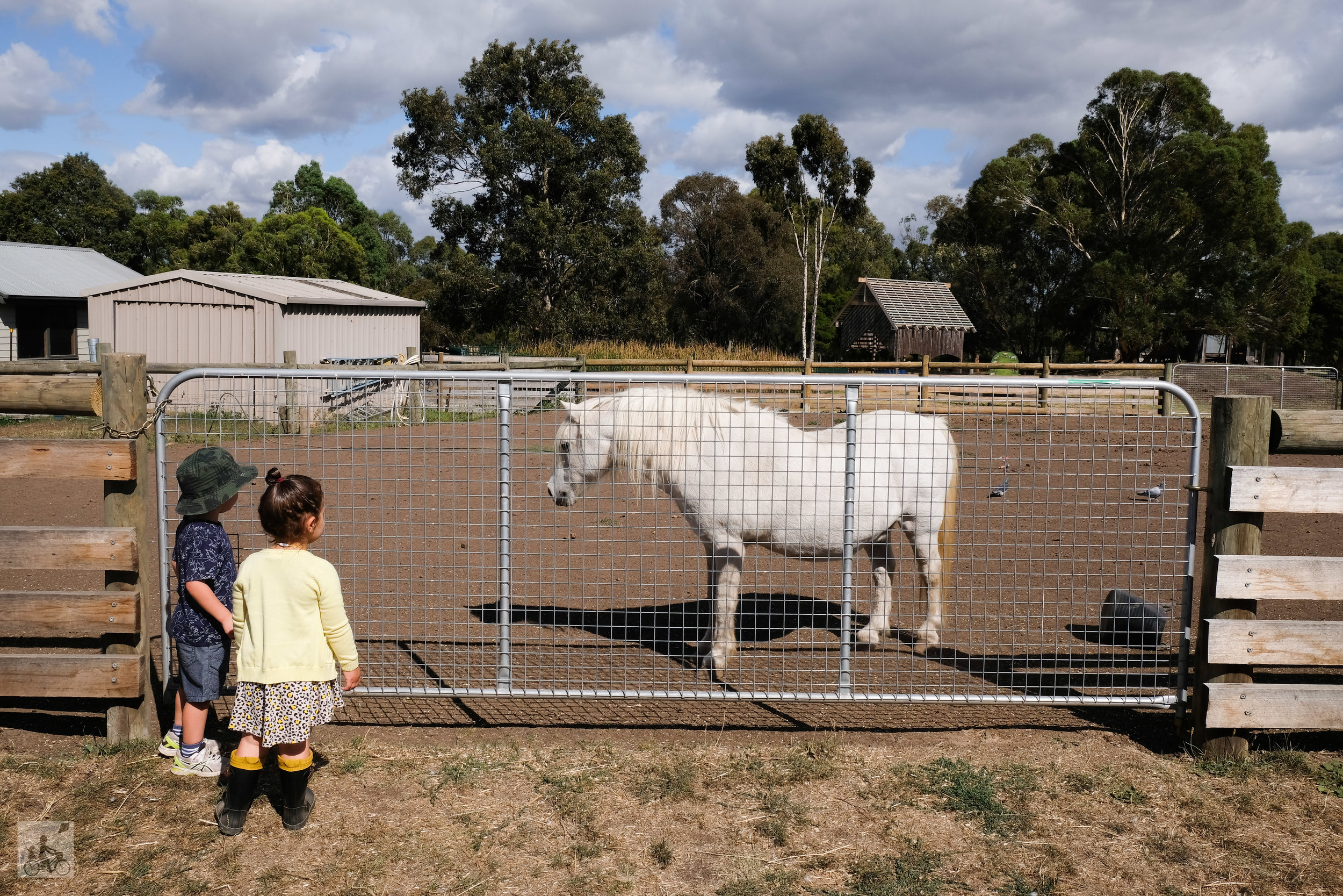 bundoora farm, bundoora - mamma knows north