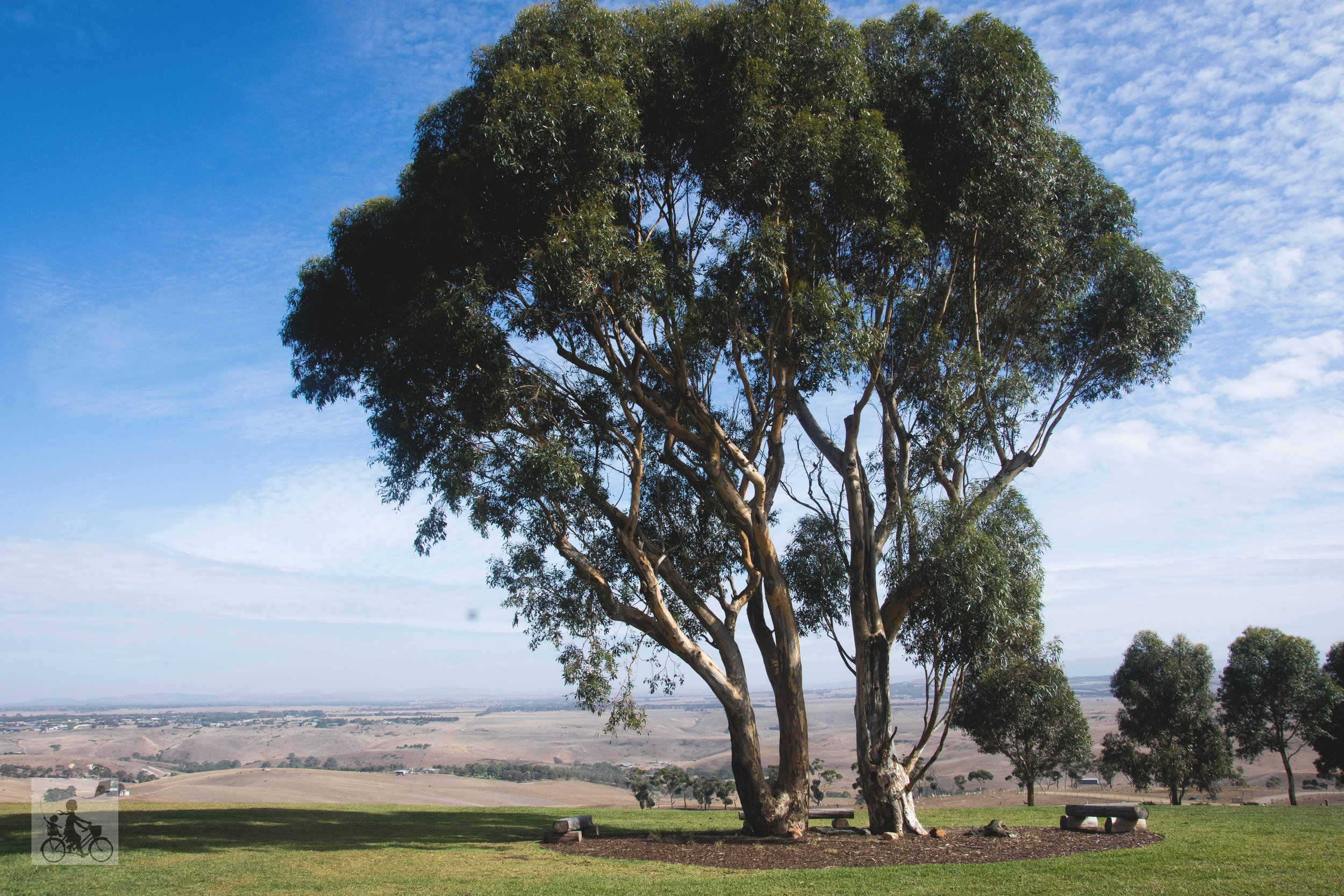 marnong estate, mickelham - mamma knows north