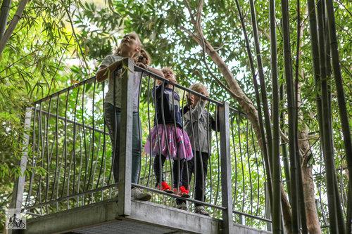 Ian Potter Children's Gardens