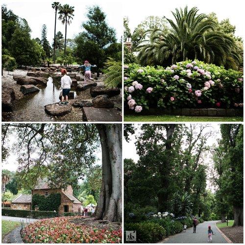 fitzroy+gardens+coll+4.jpg