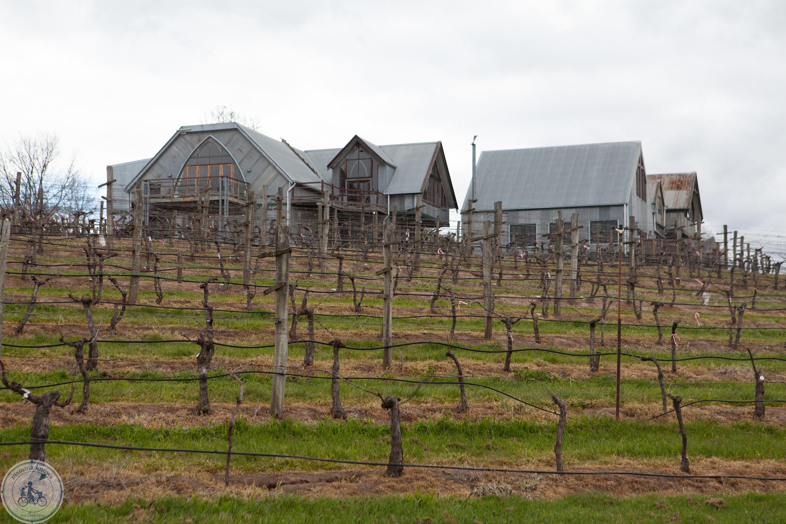 cleveland winery mkn-37.jpg