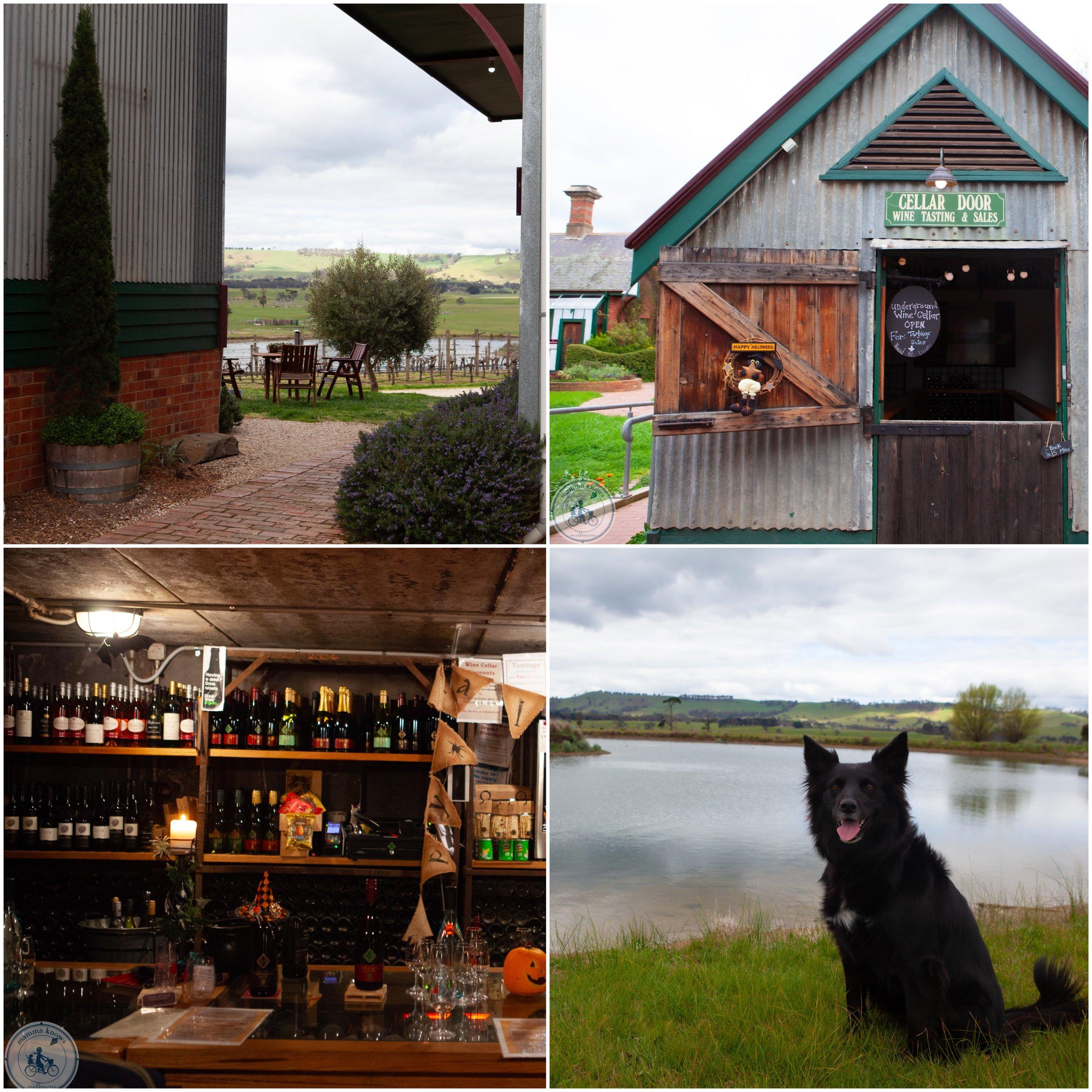 mkn cleveland winery . jpg.jpg