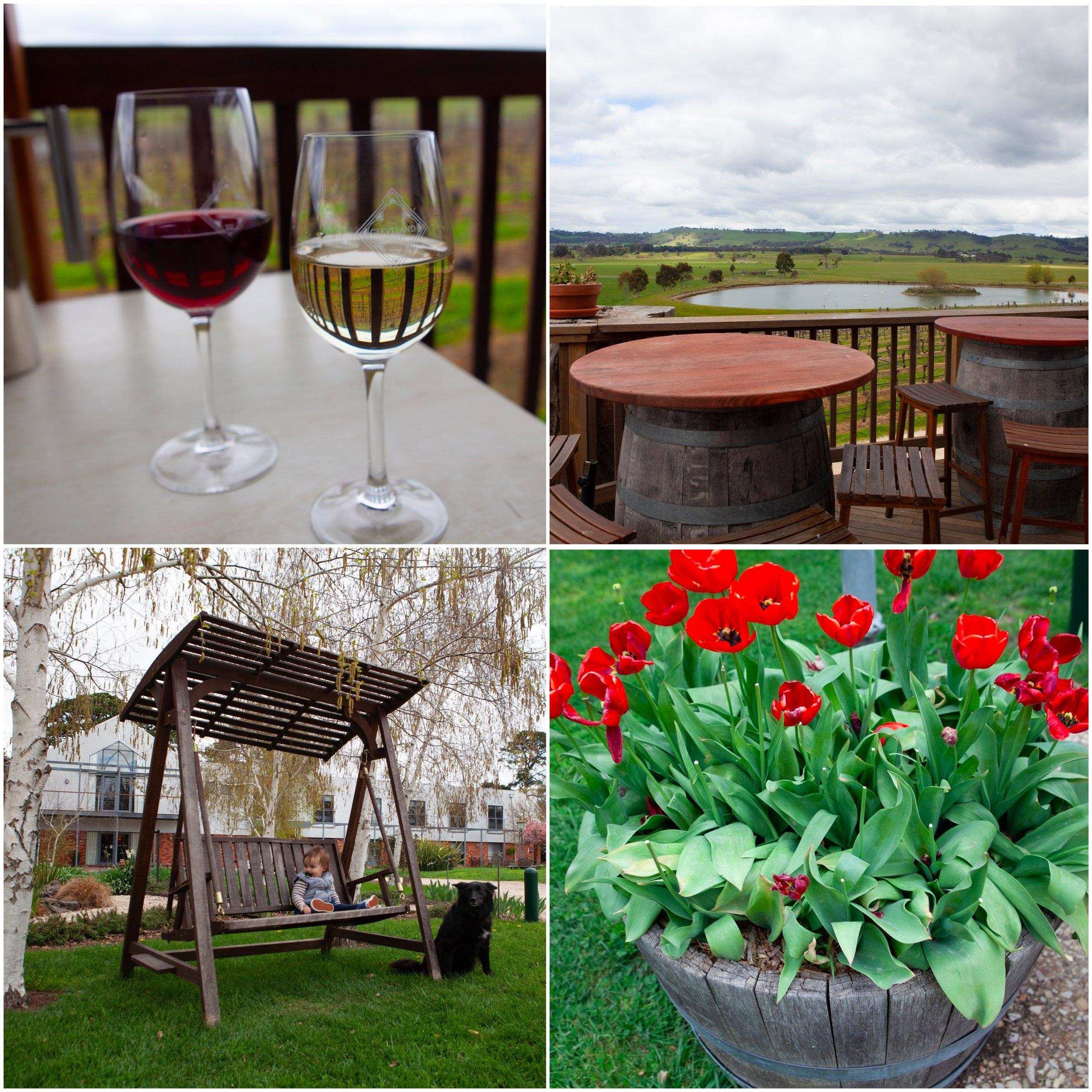 cleveland winery .jpg
