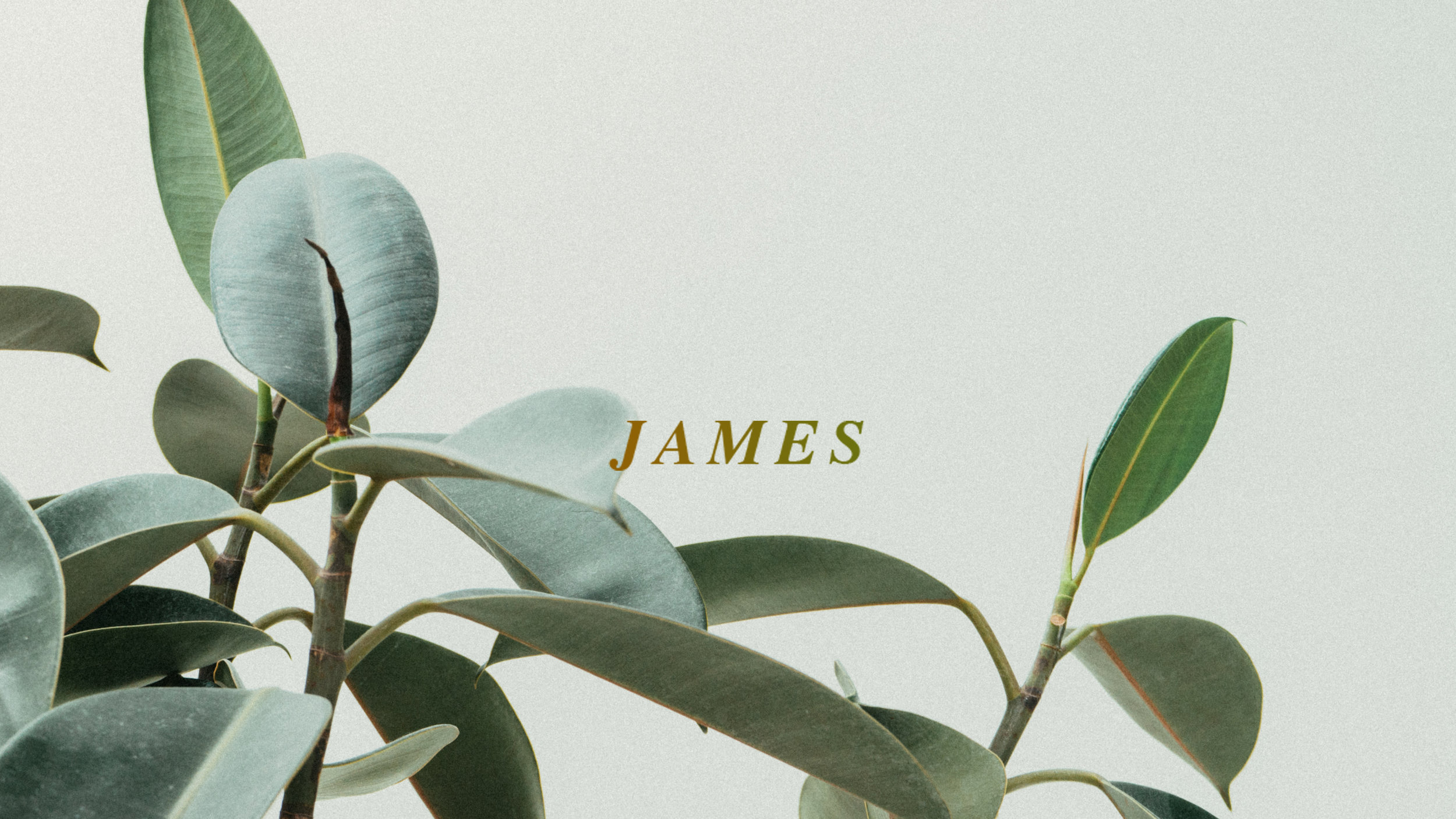 JAMES_1.jpg