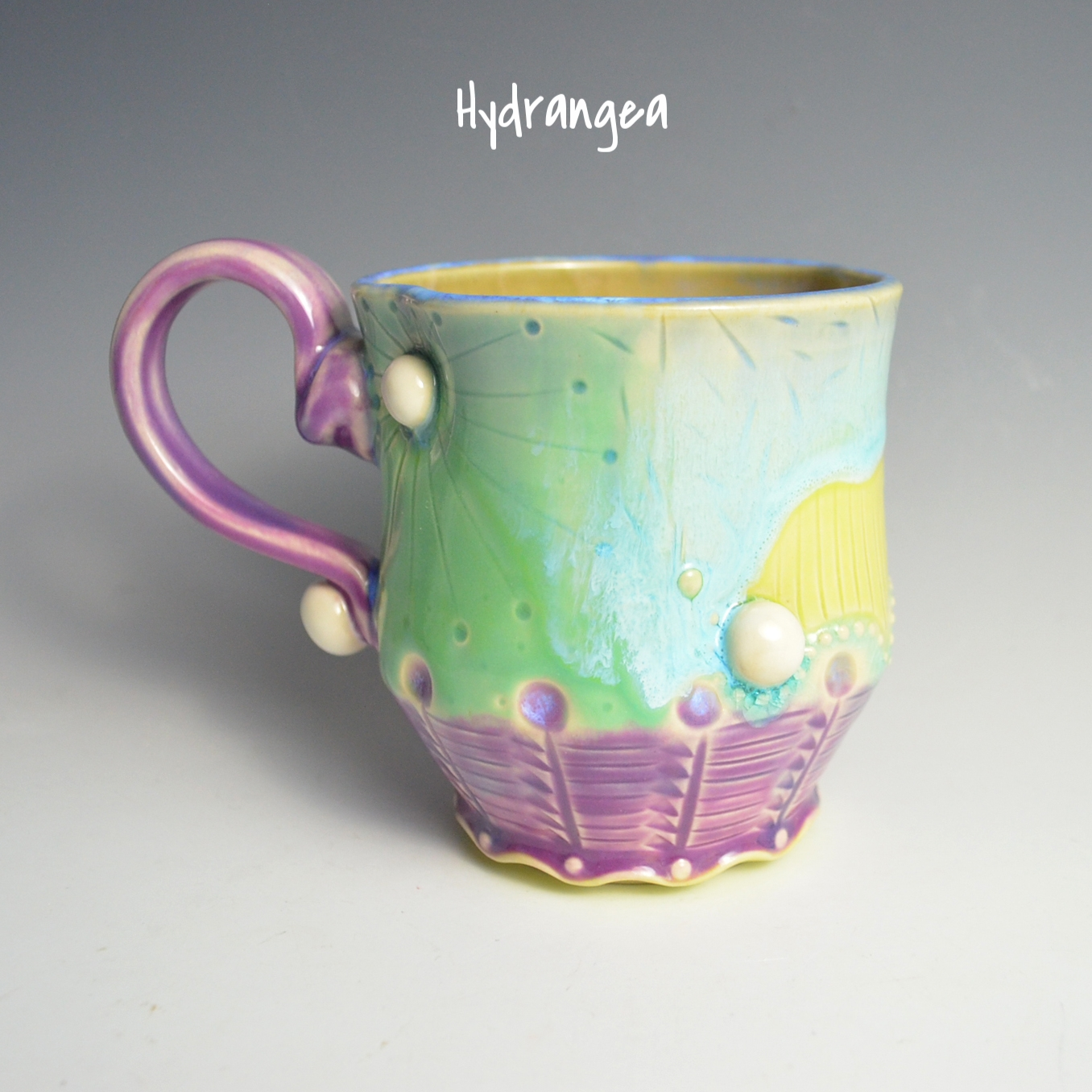 2676 - #6 Hydrangea.JPG